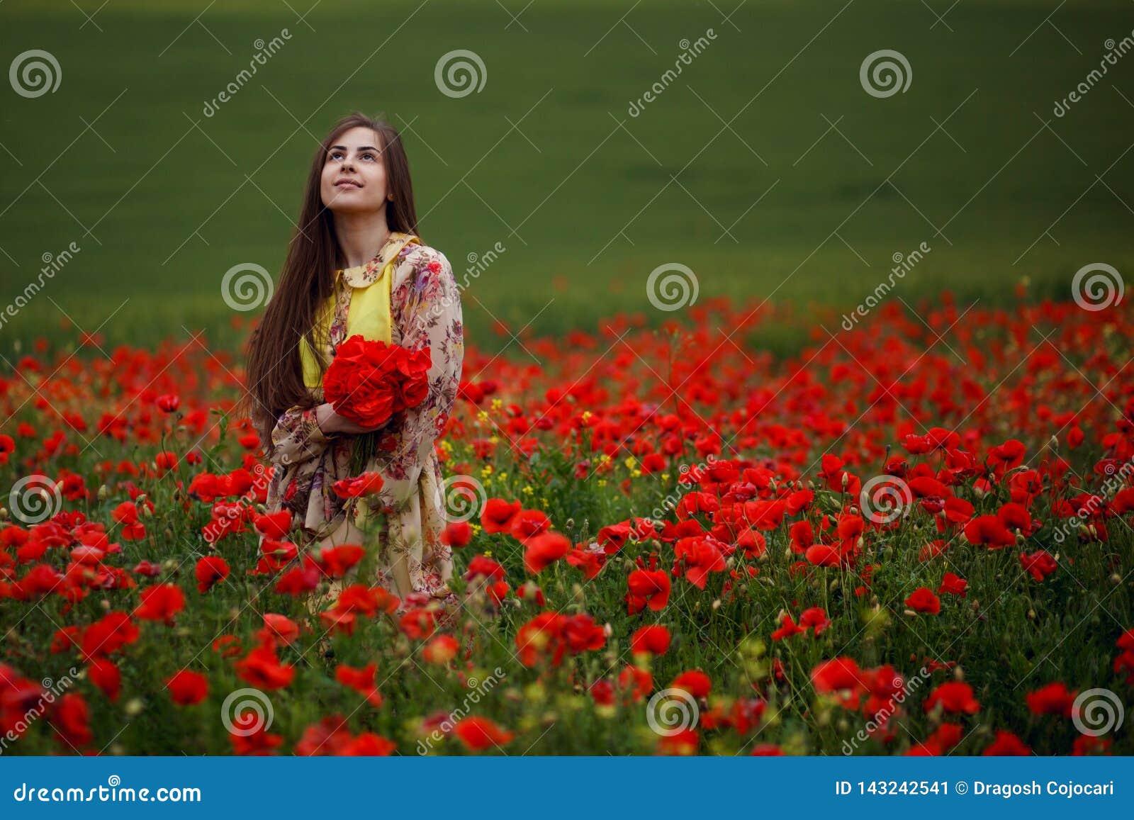 Sinnlig lång haired flicka som placeras i ett rött vallmofält, på en härlig sommarlandskapbakgrund