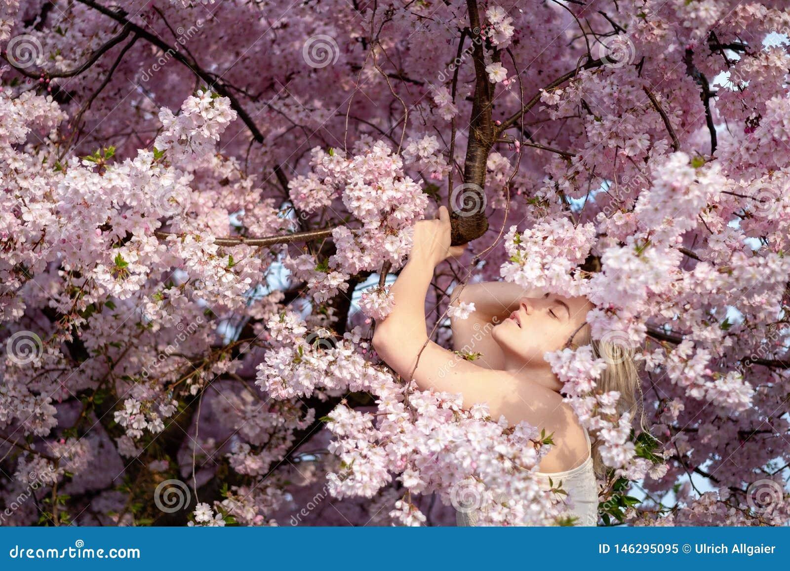 Sinnlig stående av en ung kvinna i mitt av de rosa blomningarna av ett blomstra träd