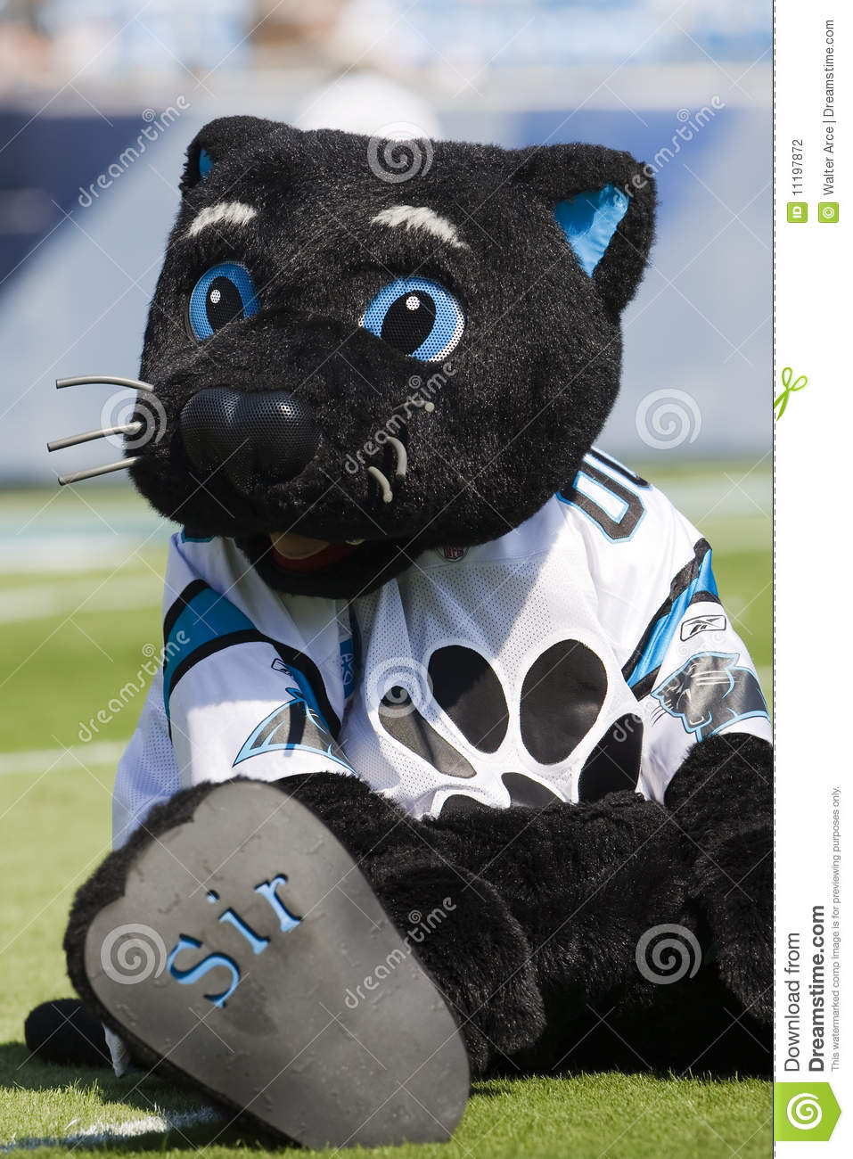 Kansas City Chiefs Clipart Sir Purr Kansas ...