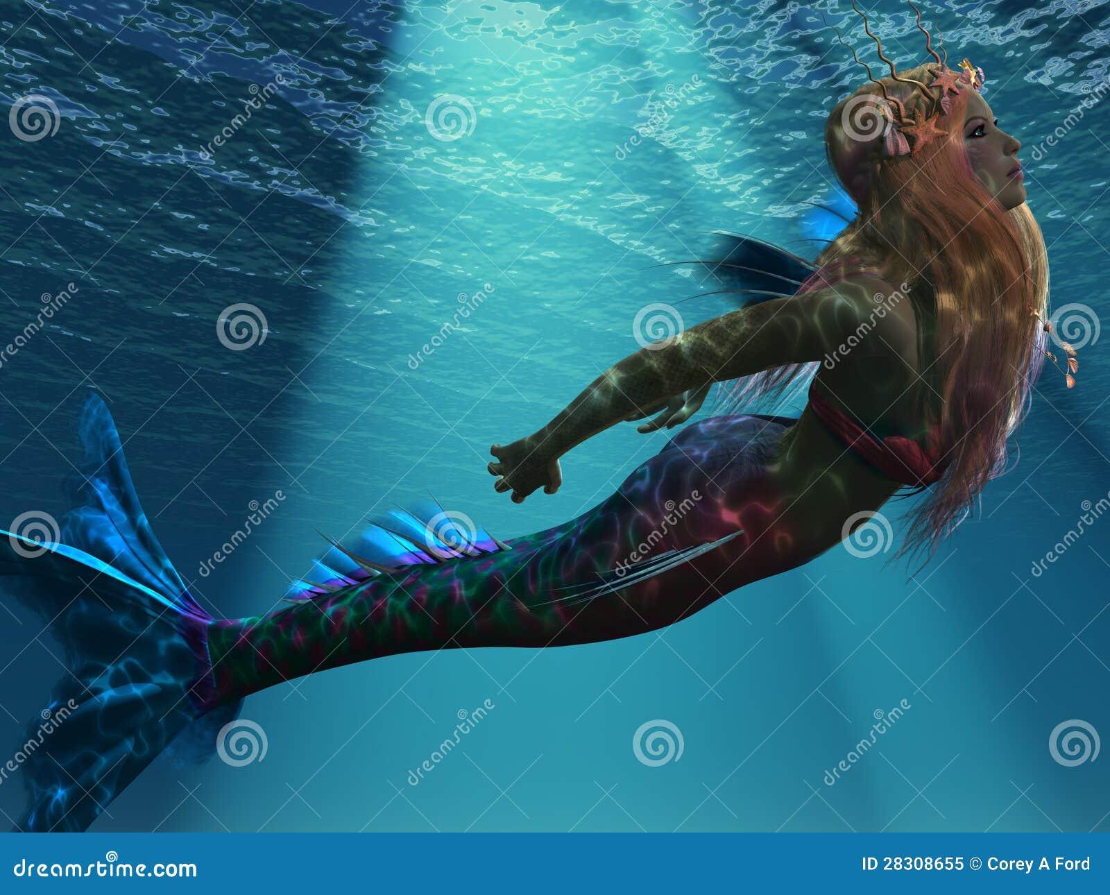 Sir ne de la mer photo libre de droits image 28308655 - Image de sirene h2o ...