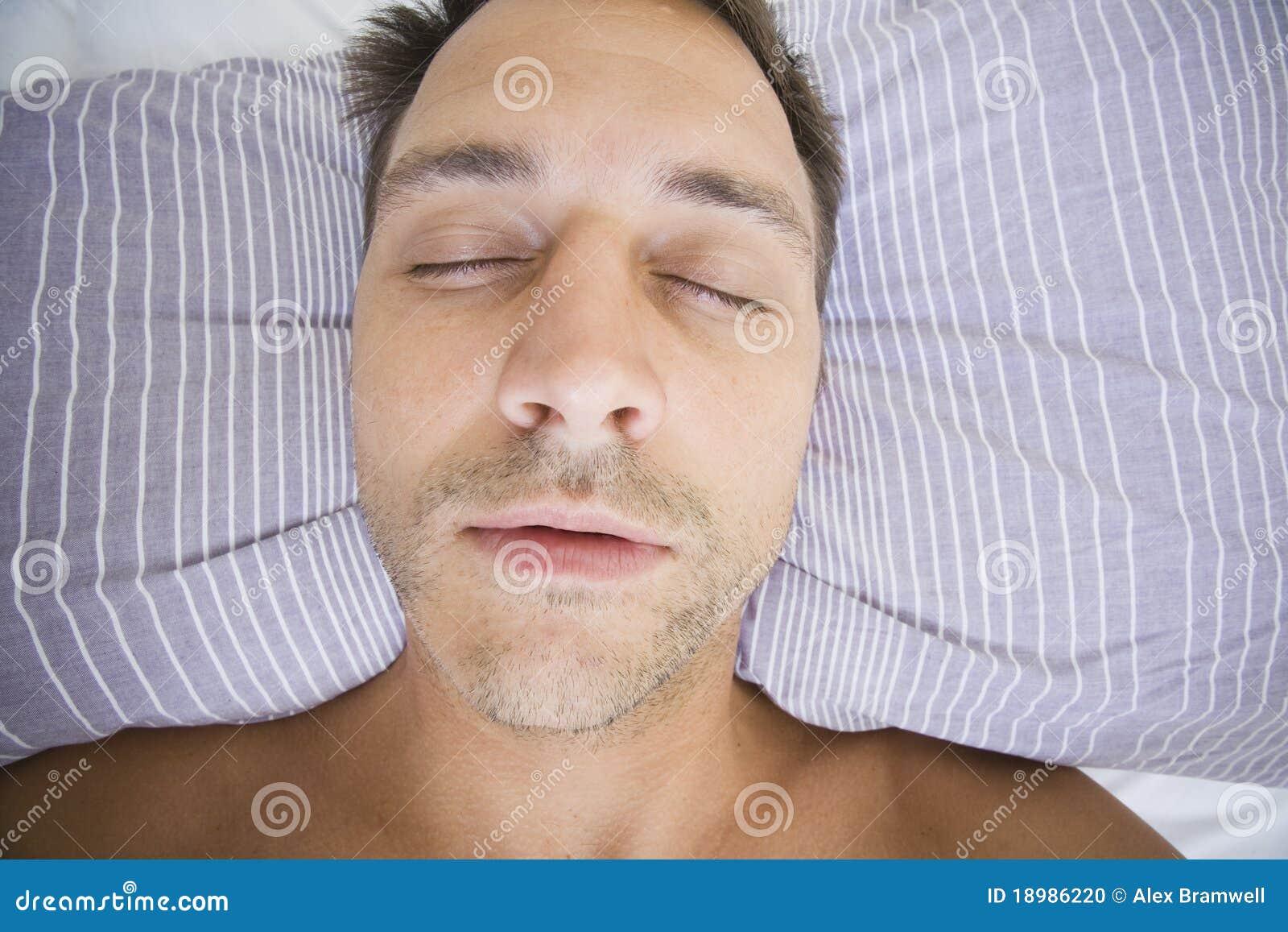 Sirva dormido