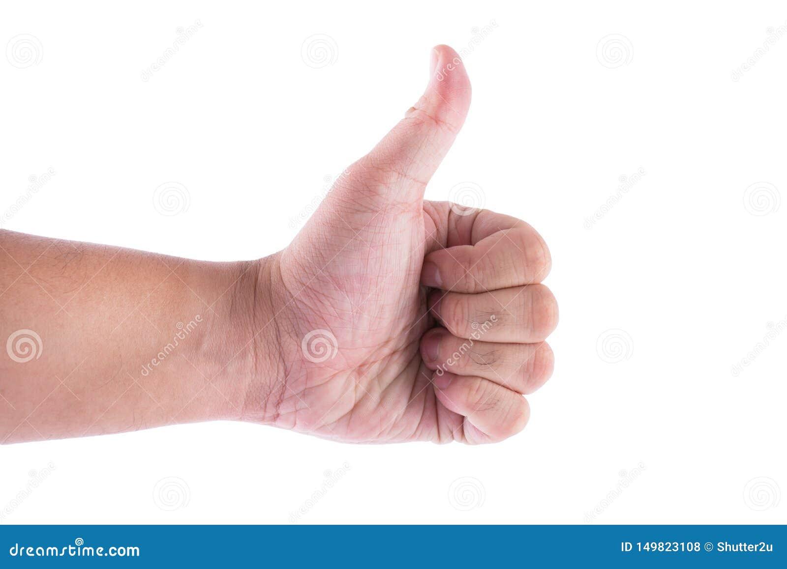 Sirva la mano con el pulgar para arriba aislado en el fondo blanco Como y bueno gesticulando tema