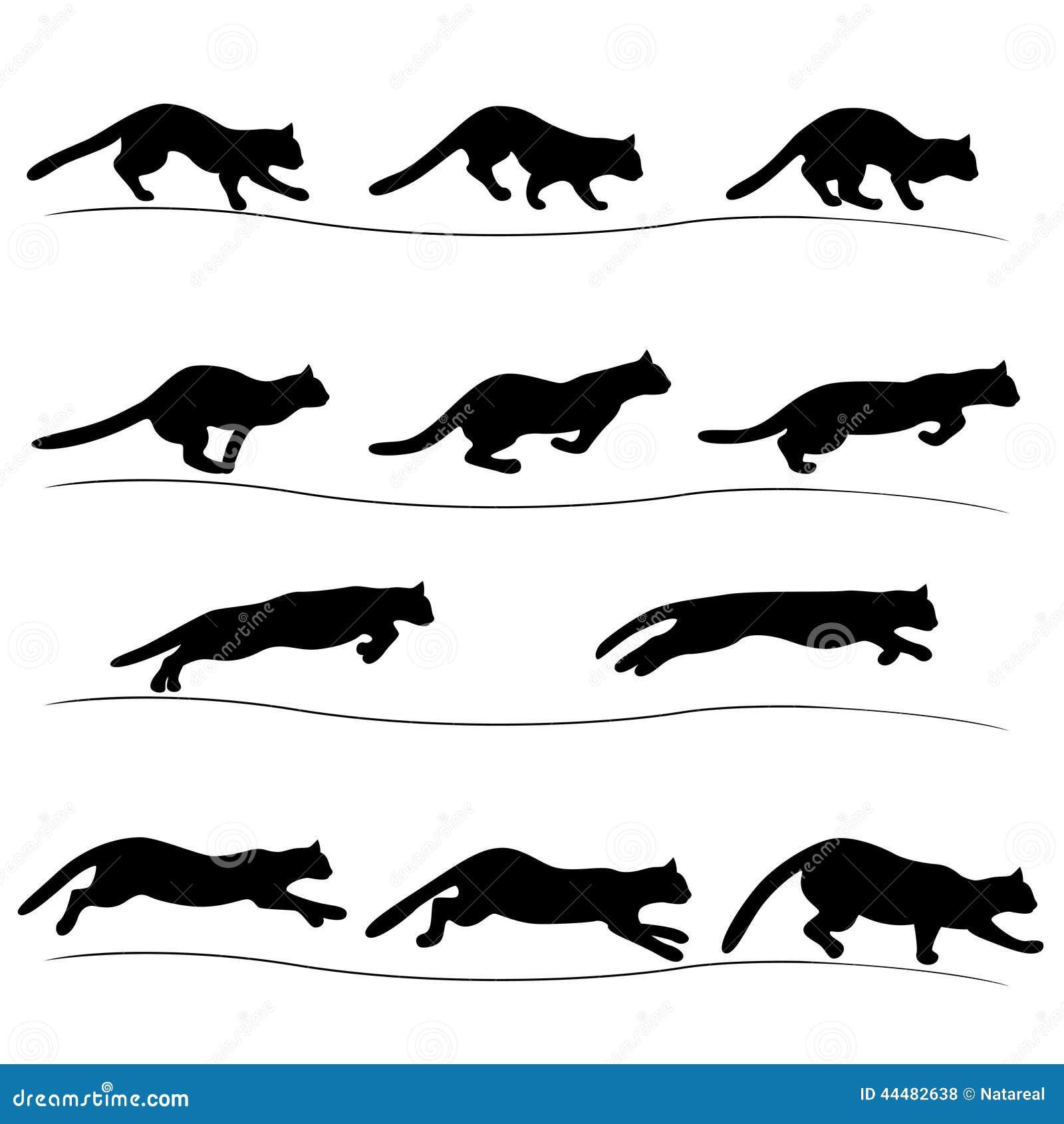 silueta de gato negro-#24
