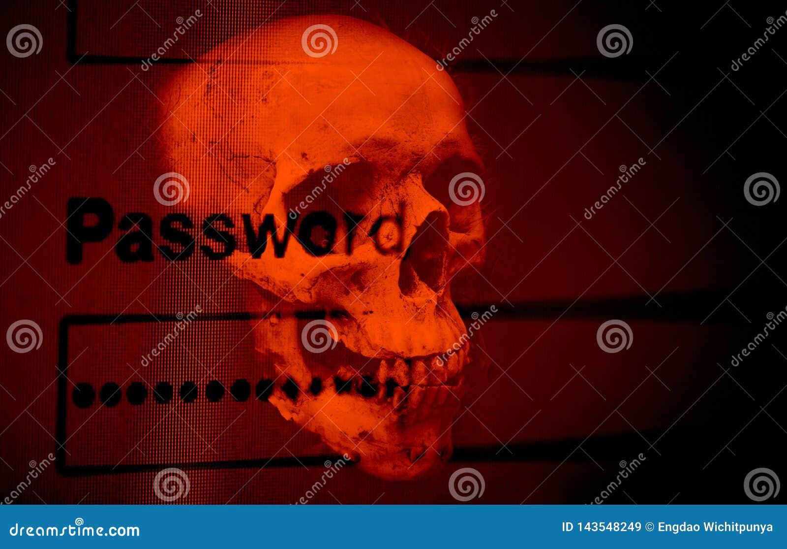 Sistema de dados da verificação da proteção do ladrão do cyber da segurança da senha