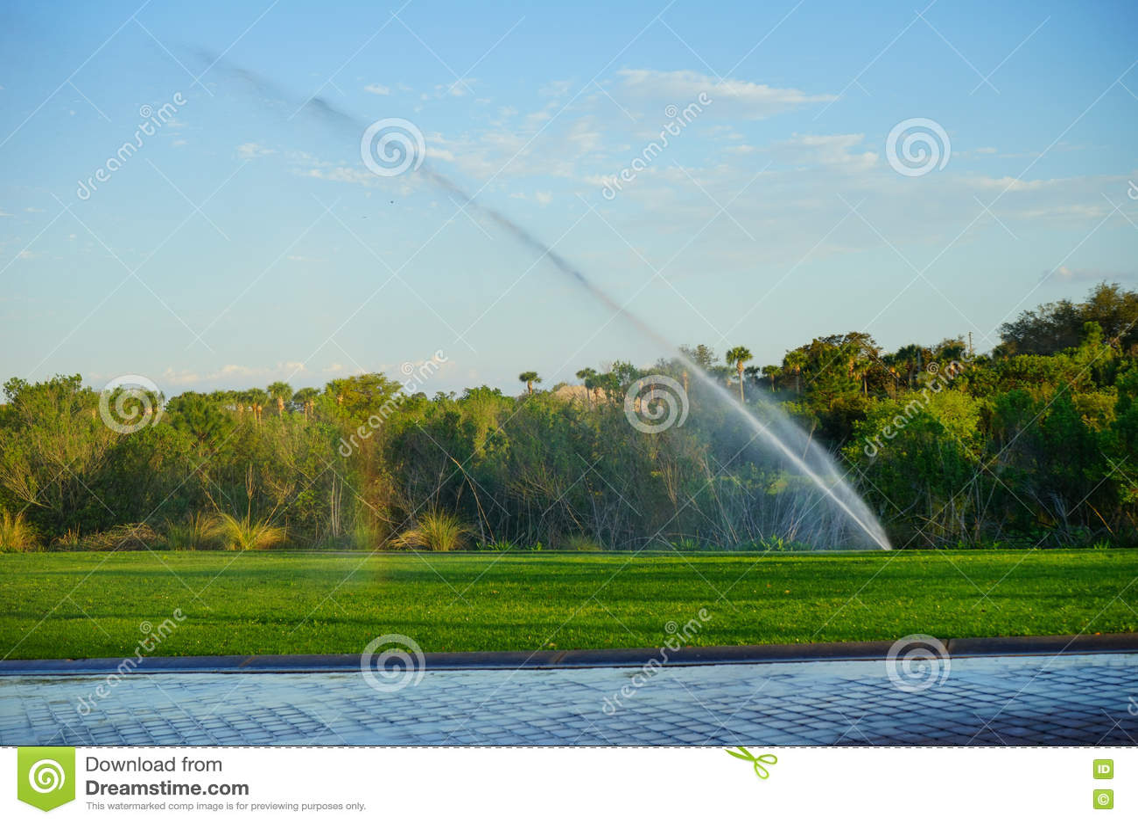 Sistema de espray de la irrigación del jardín