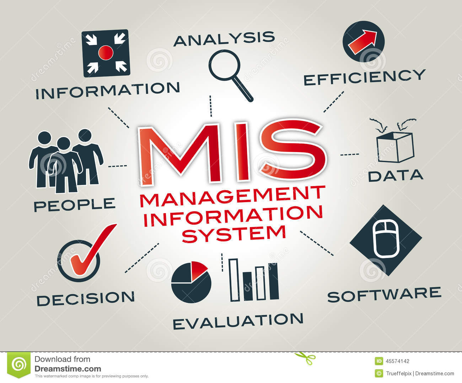 Sistema de información de dirección, MIS