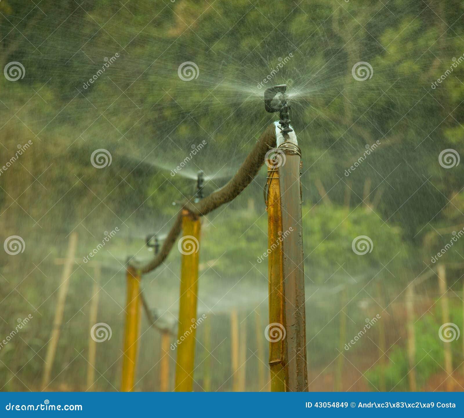 Sistema de irrigação do terceiro mundo