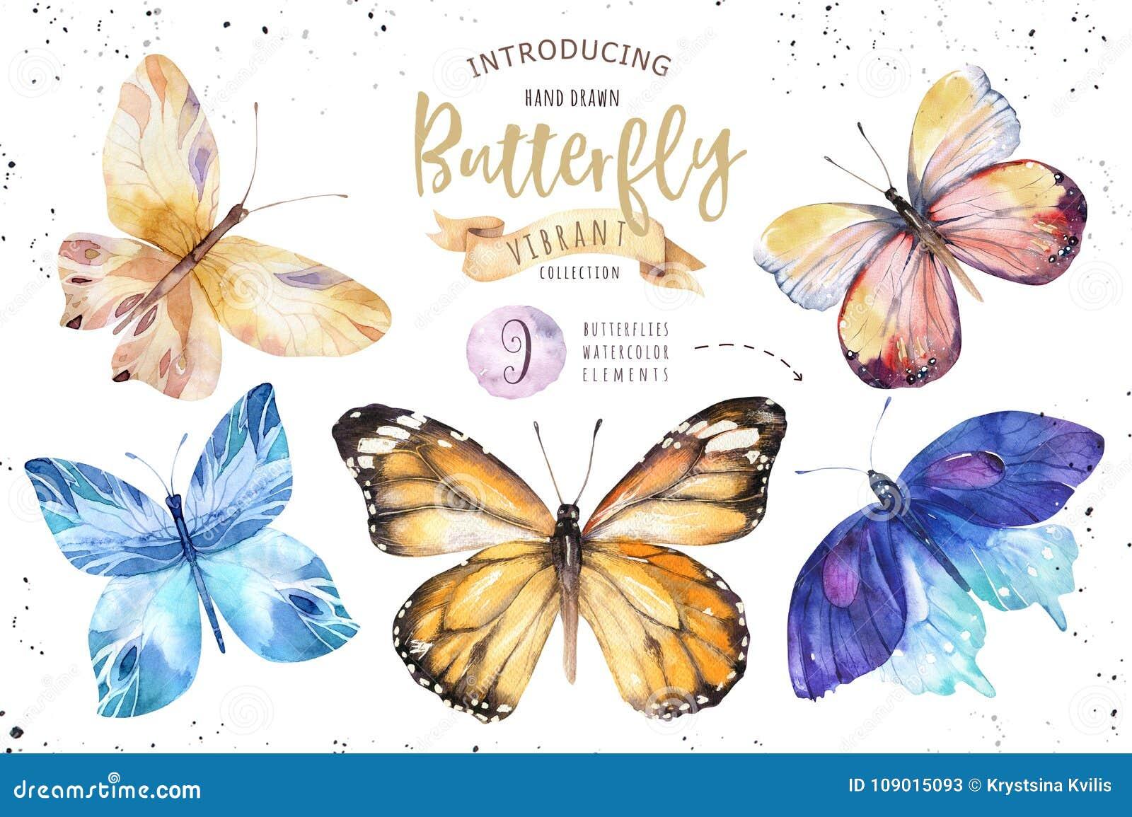 Sistema de la mariposa del boho de la acuarela Arte aislado verano de la primavera del vintage Ejemplo del Watercolour invitación
