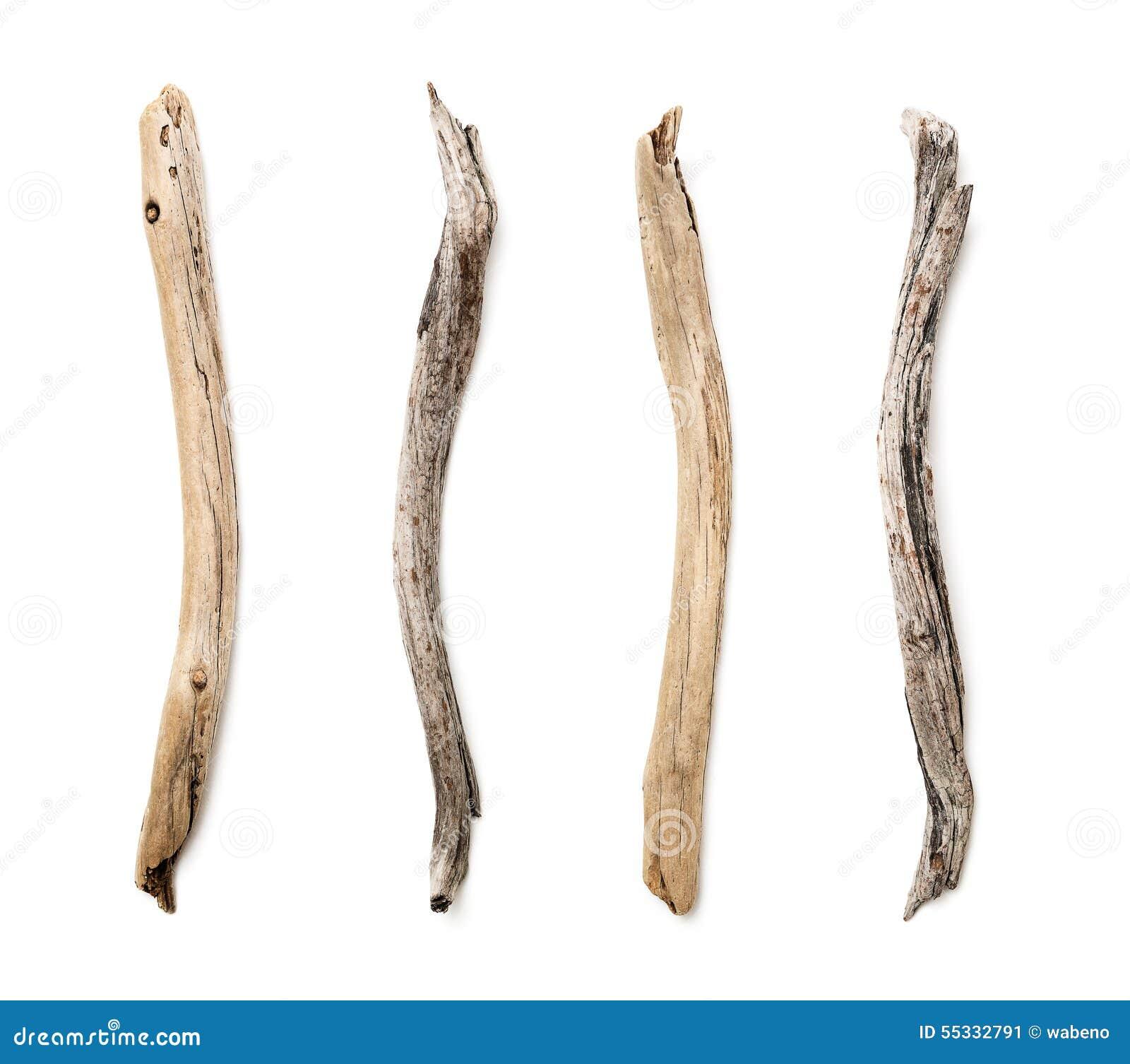 Sistema de la rama de rbol seca foto de archivo imagen - Ramas de arbol para decoracion ...