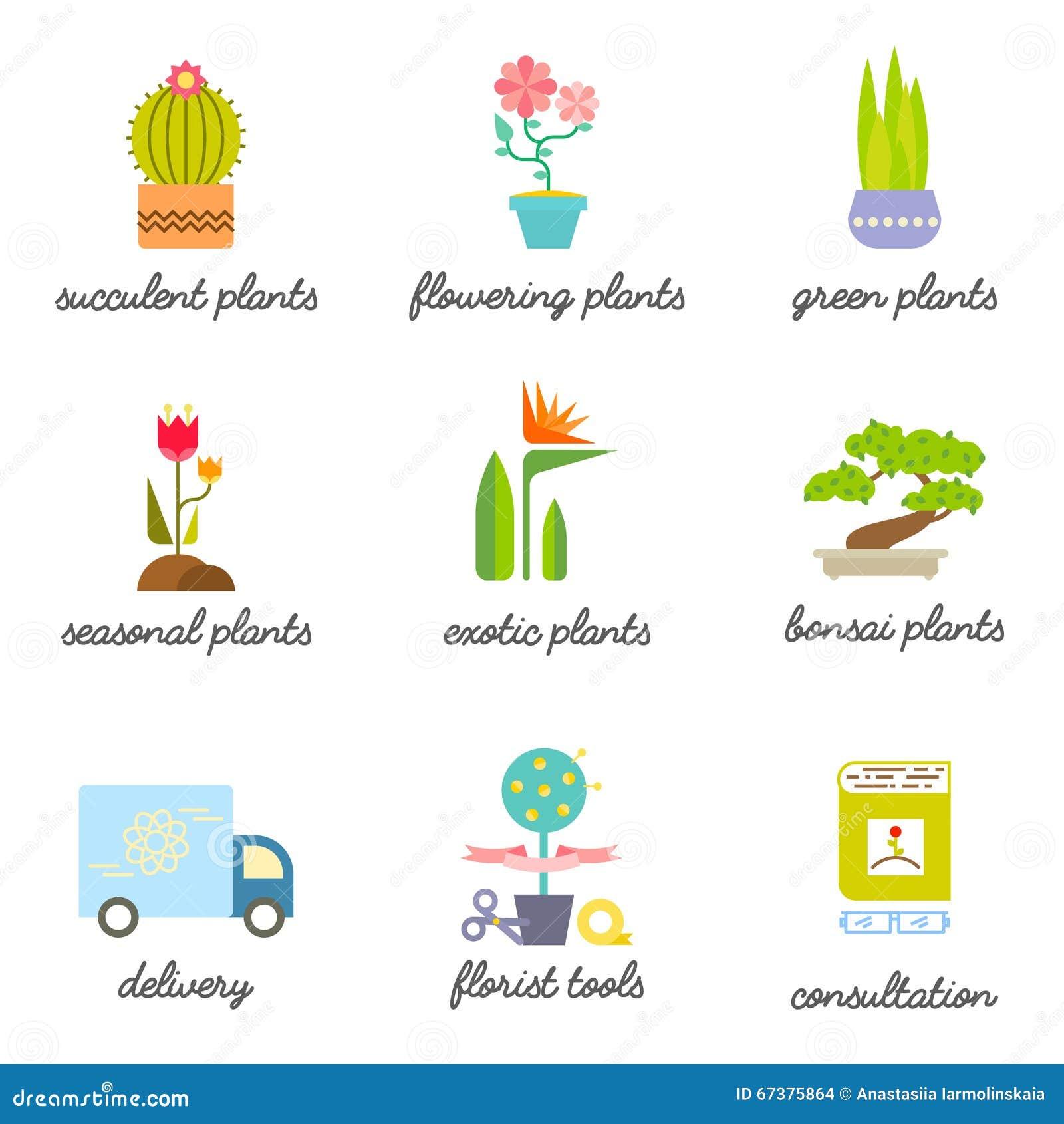 Sistema de los iconos planos coloridos para la flor o la floristería