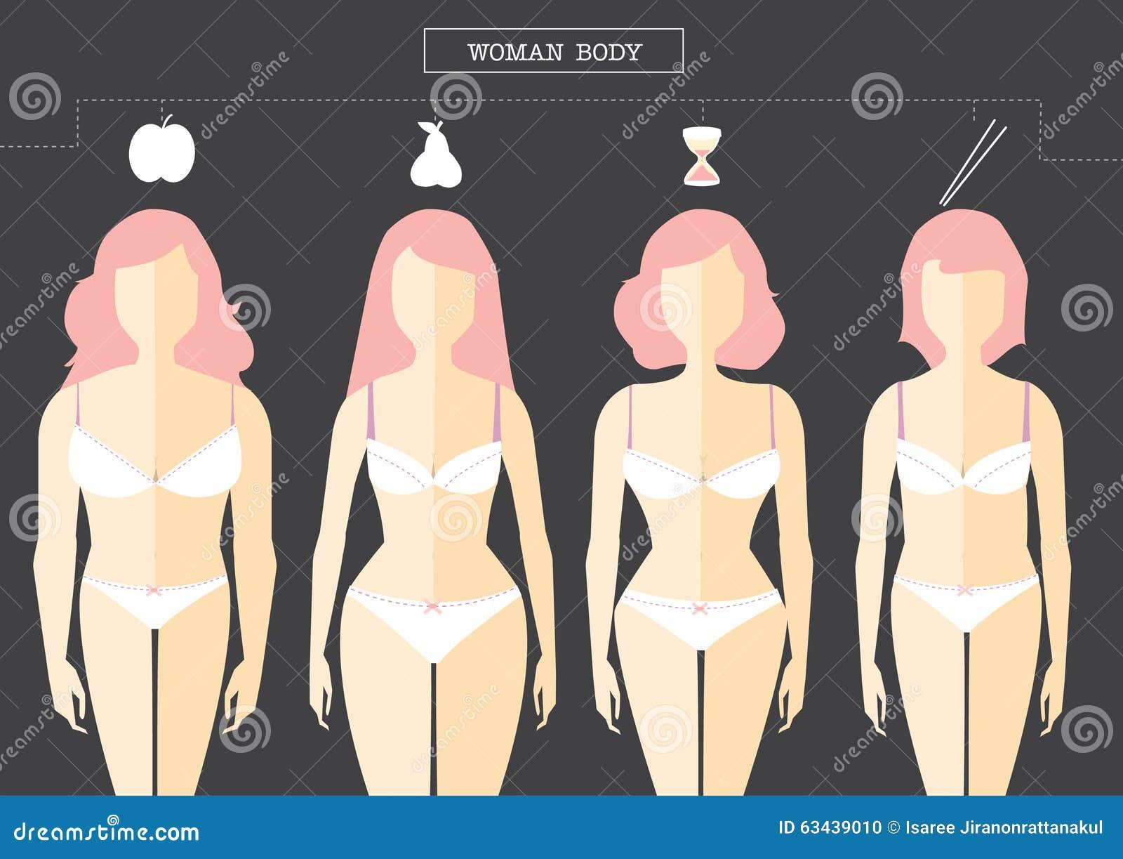 Tipos de cuerpo femenino ilustración del vector. Ilustración de ...