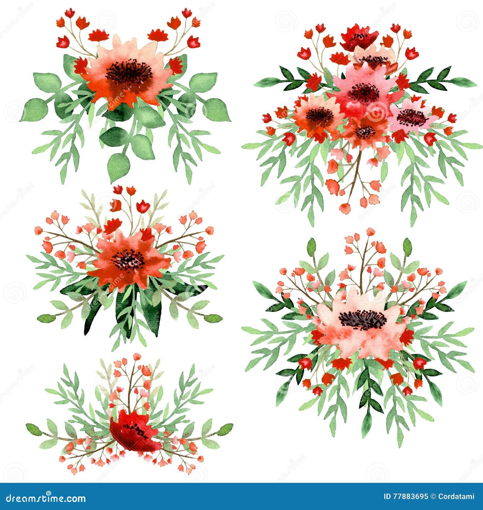 Sistema De Ramos Vivos De La Acuarela Con Las Flores Rojas Stock de ilustración