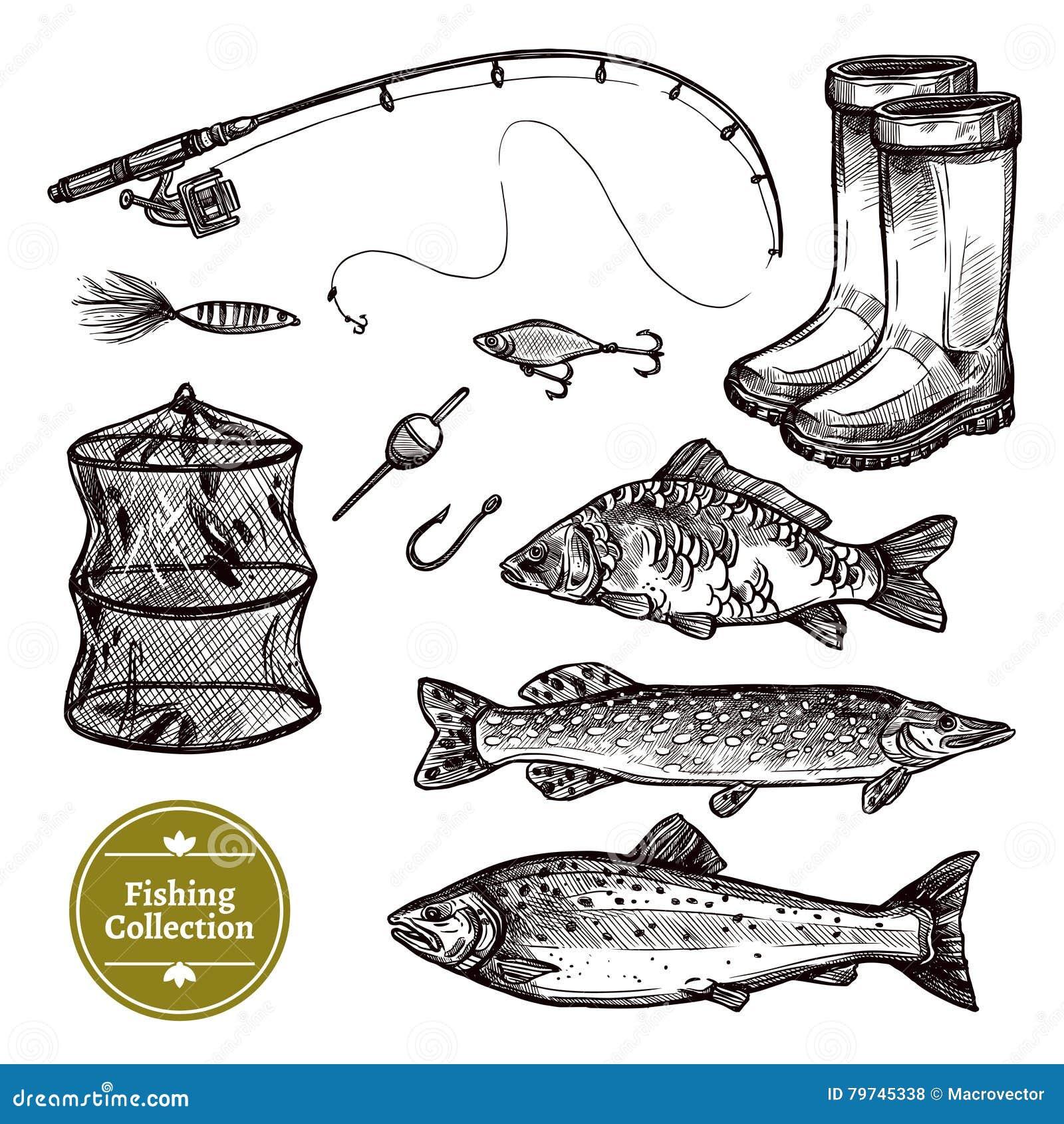Sistema del bosquejo de la pesca