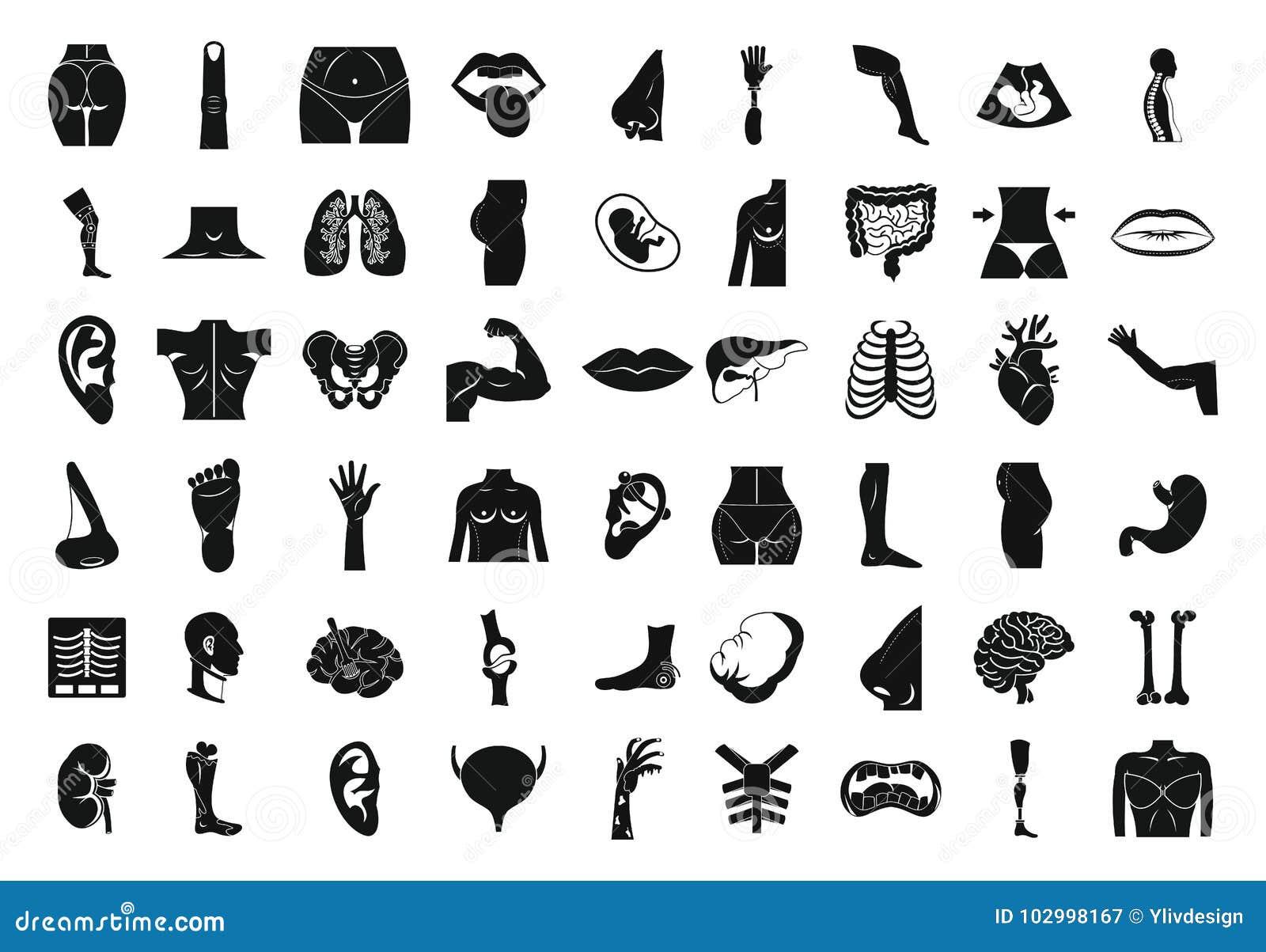 Sistema Del Icono Del Cuerpo Humano, Estilo Simple Ilustración del ...