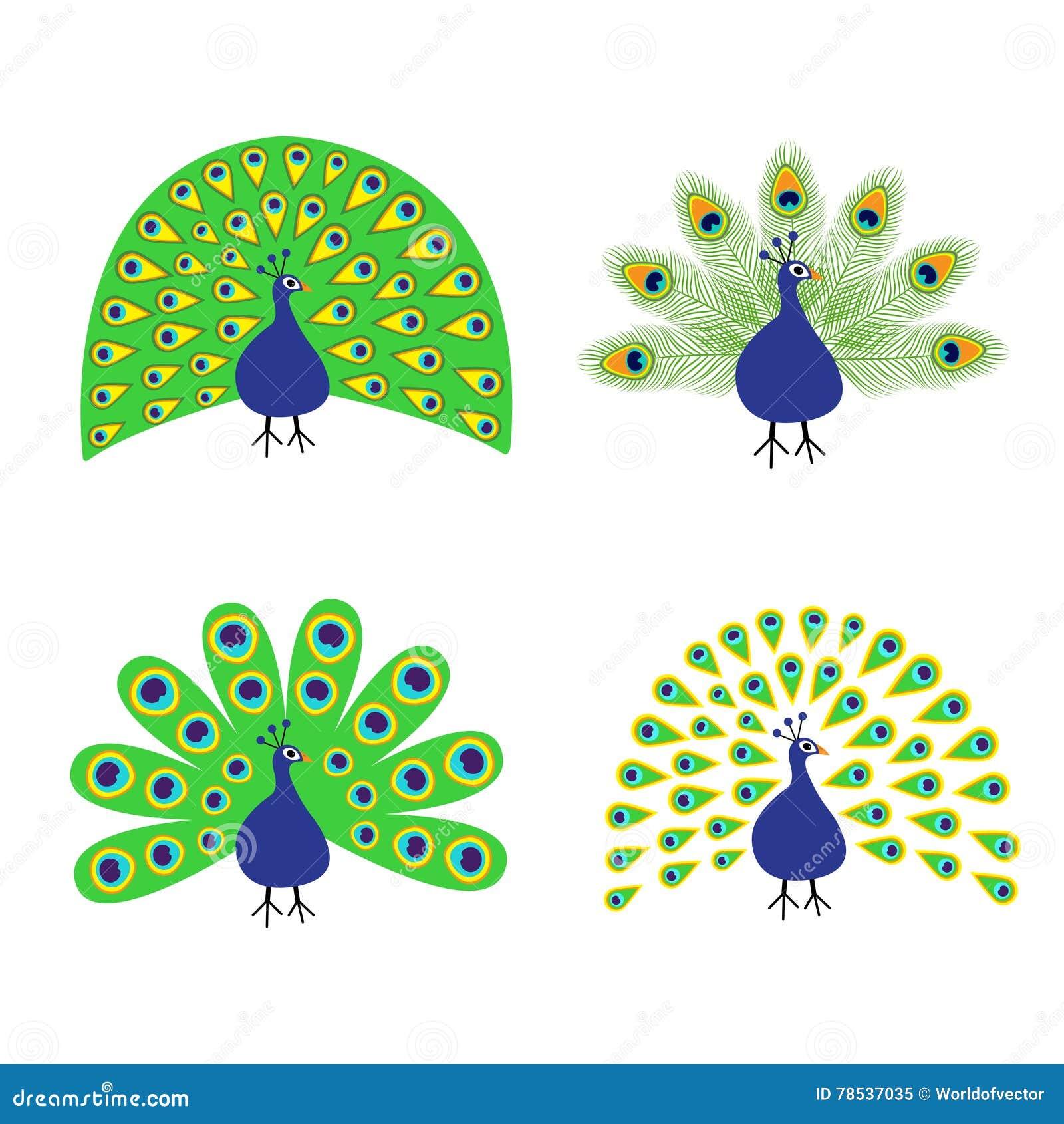 Plumas Vector Un Dibujo De Pavo Www Imagenesmy Com