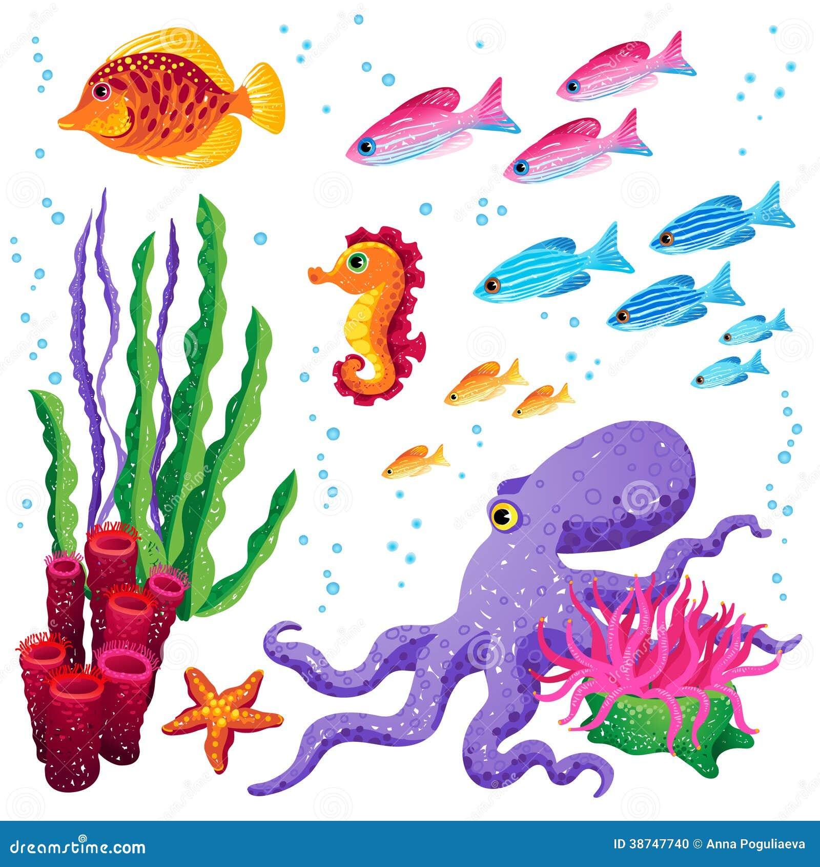sistema del vector de animales y de algas marinas de mar starfish clipart png starfish clipart black and white