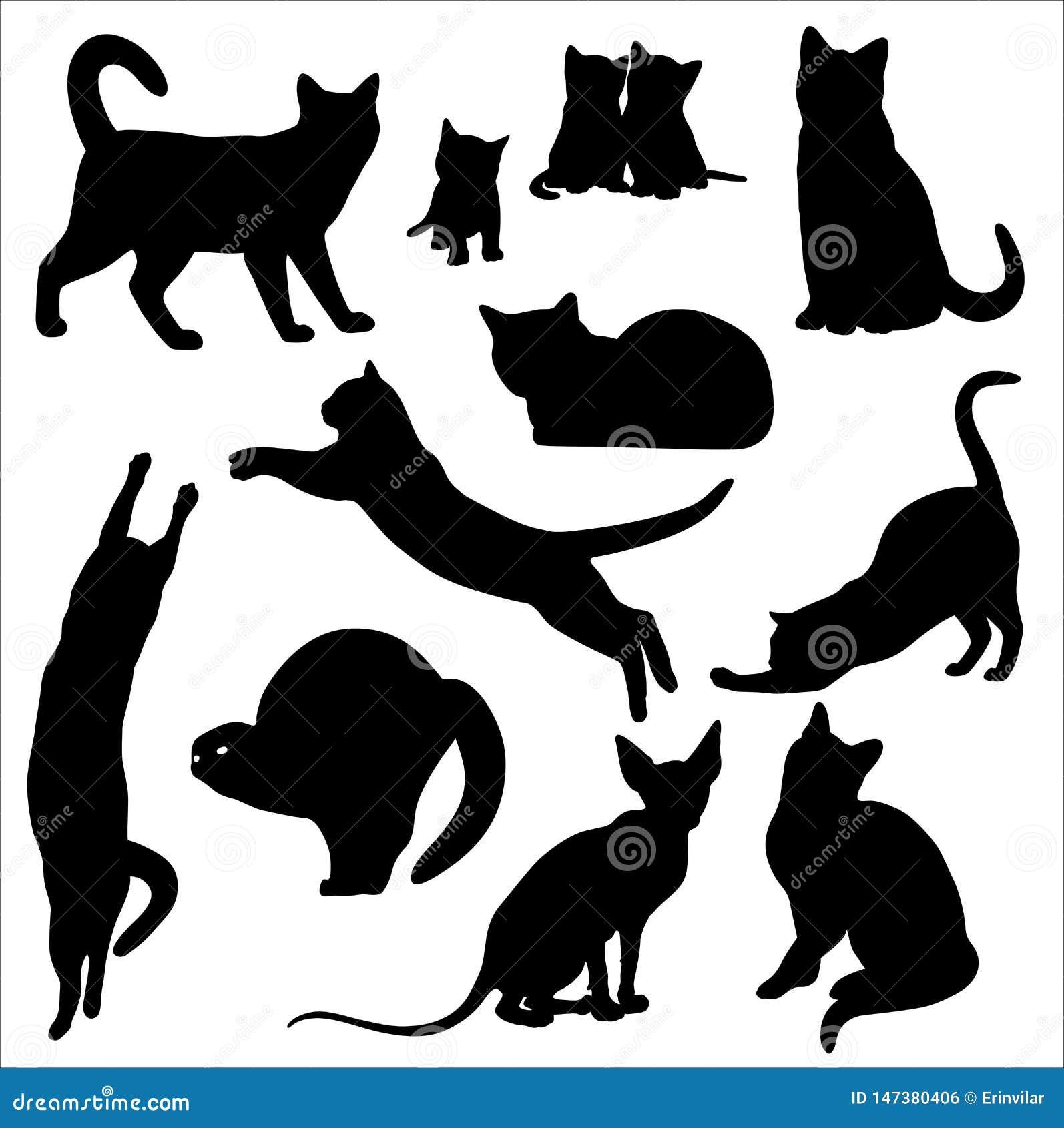 Sistema del vector de la silueta del gato aislado en el fondo blanco