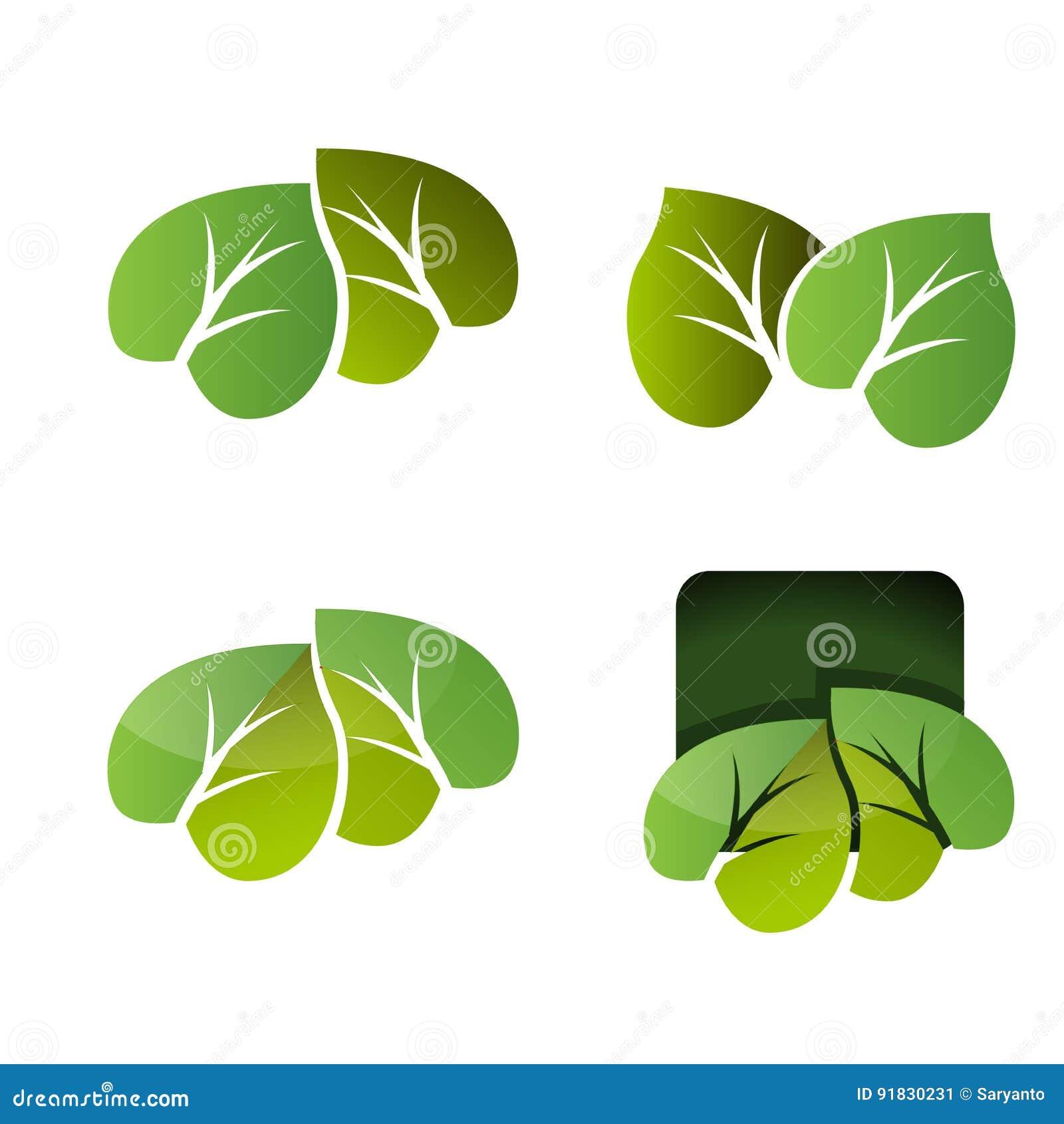 Sistema del vector del icono de las hojas aislado en el fondo blanco