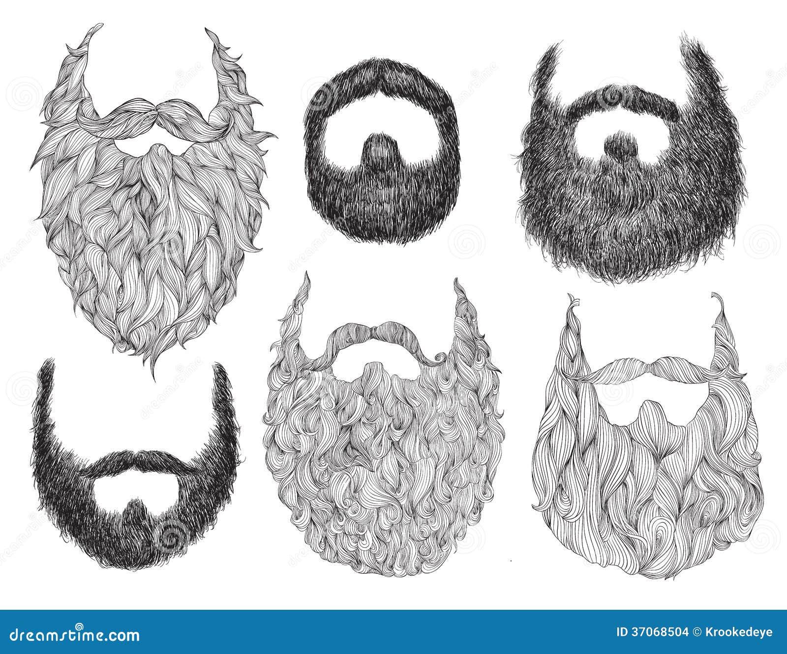 Sistema dibujado mano de la barba