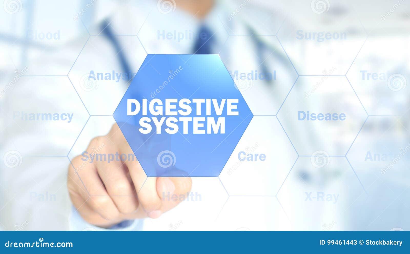 Sistema digestivo, doctor que trabaja en el interfaz olográfico, gráficos del movimiento