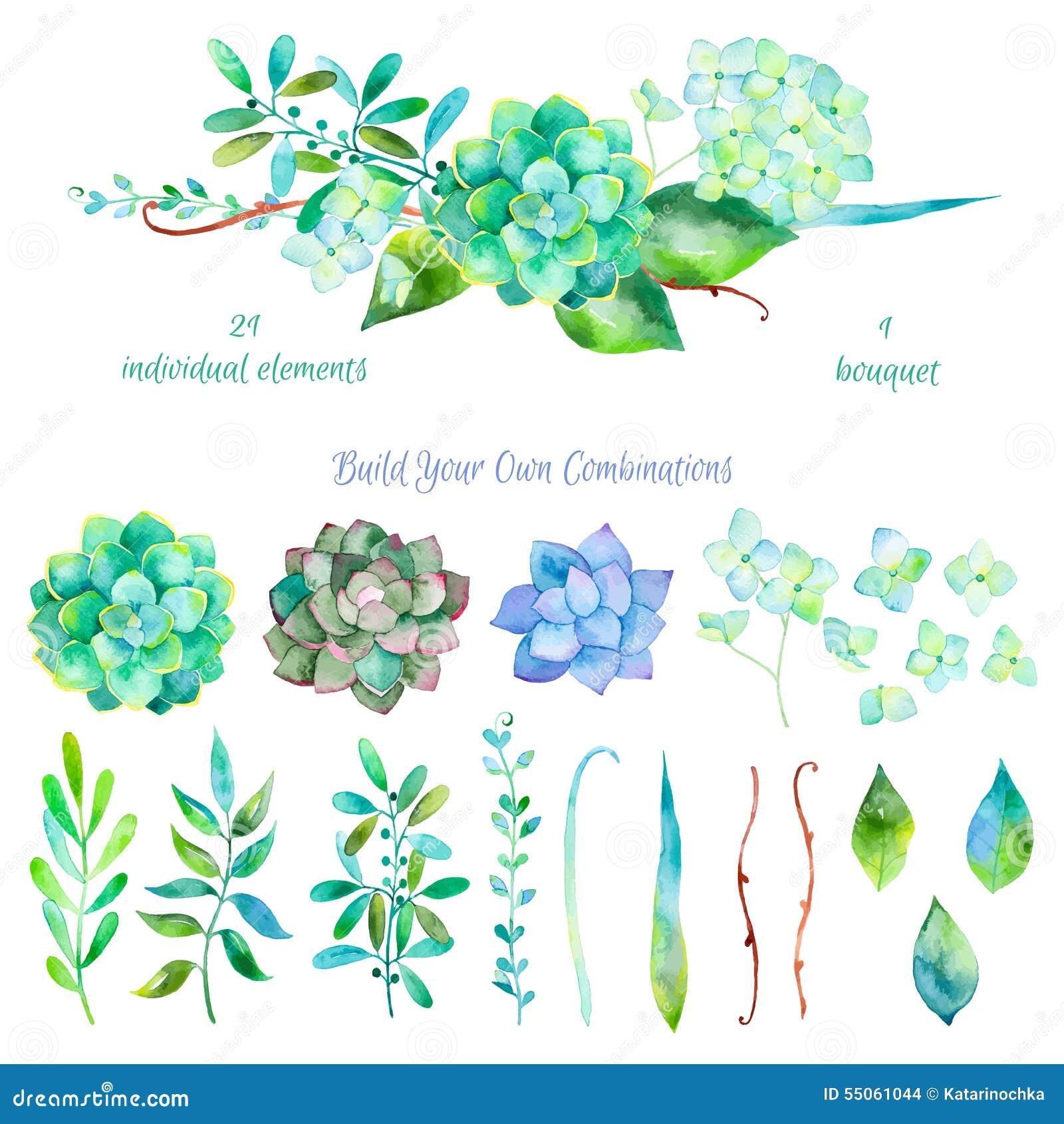 Sistema floral del vector Colección floral colorida con las hojas y las flores