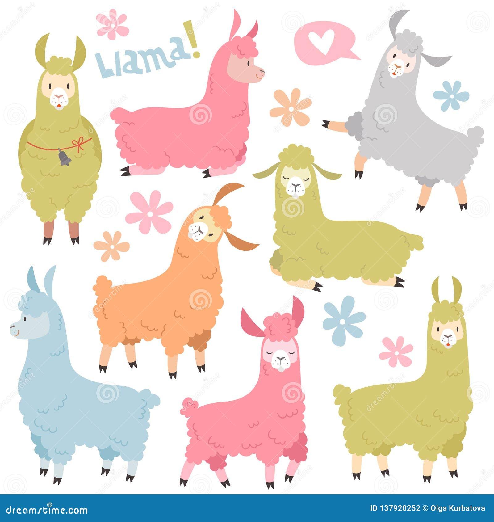 Sistema lindo de la llama Alpaca de las llamas del bebé, lama salvaje Sistema del vector de la historieta de los elementos de la