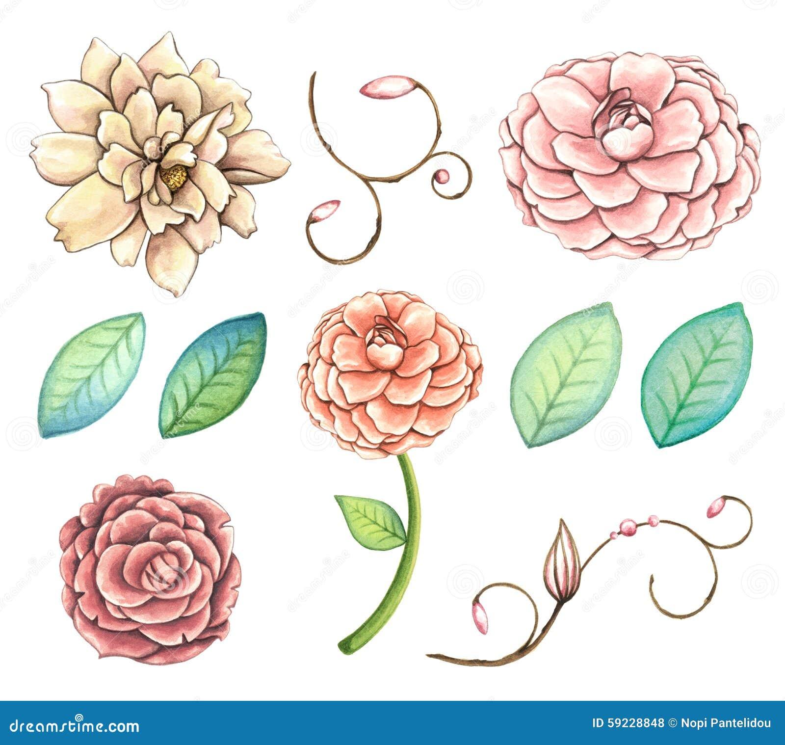 Download Sistema Pintado A Mano Del Clip Art De Las Flores De La Acuarela Stock de ilustración - Ilustración de objeto, para: 59228848