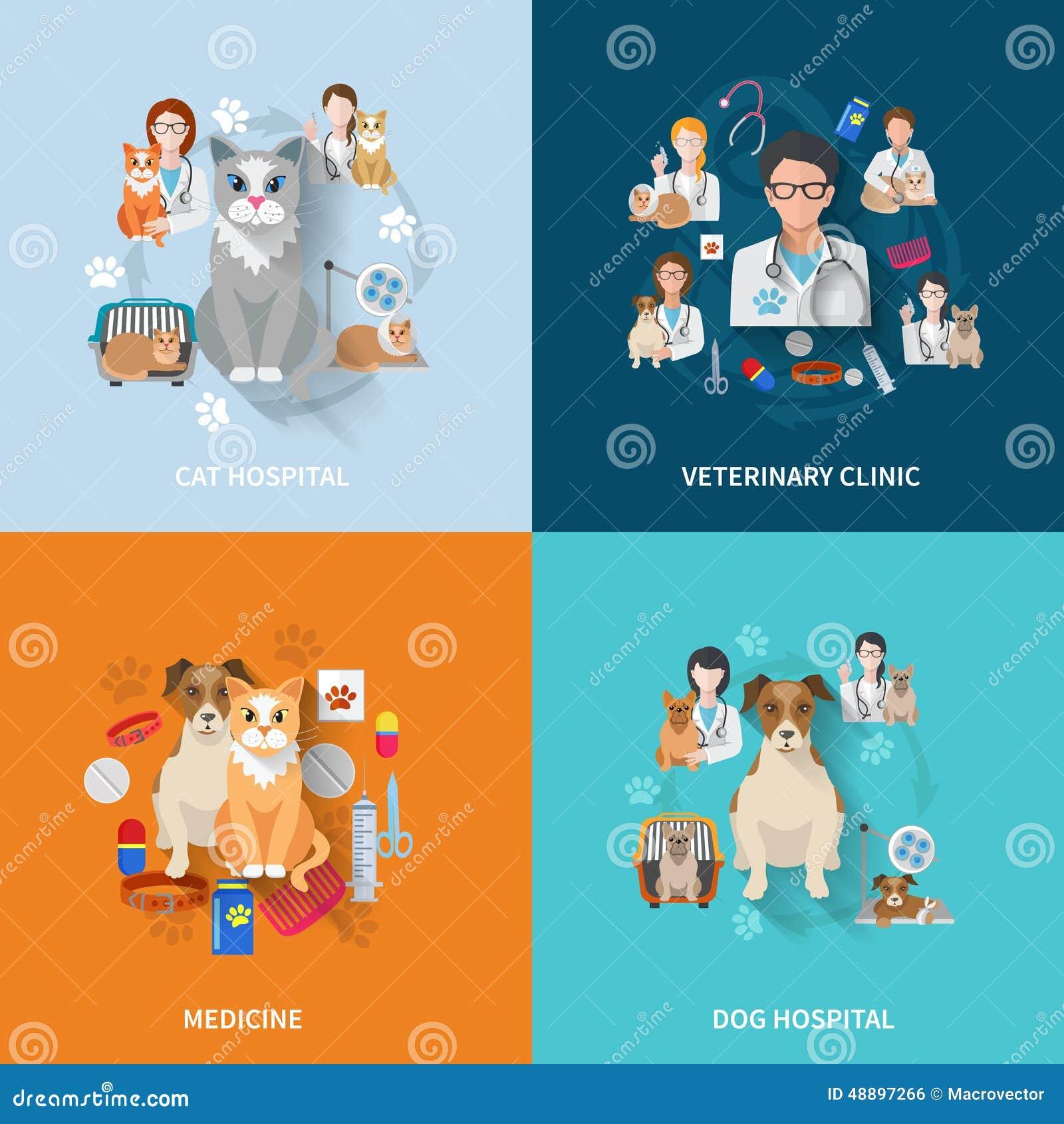 Sistema veterinario del plano