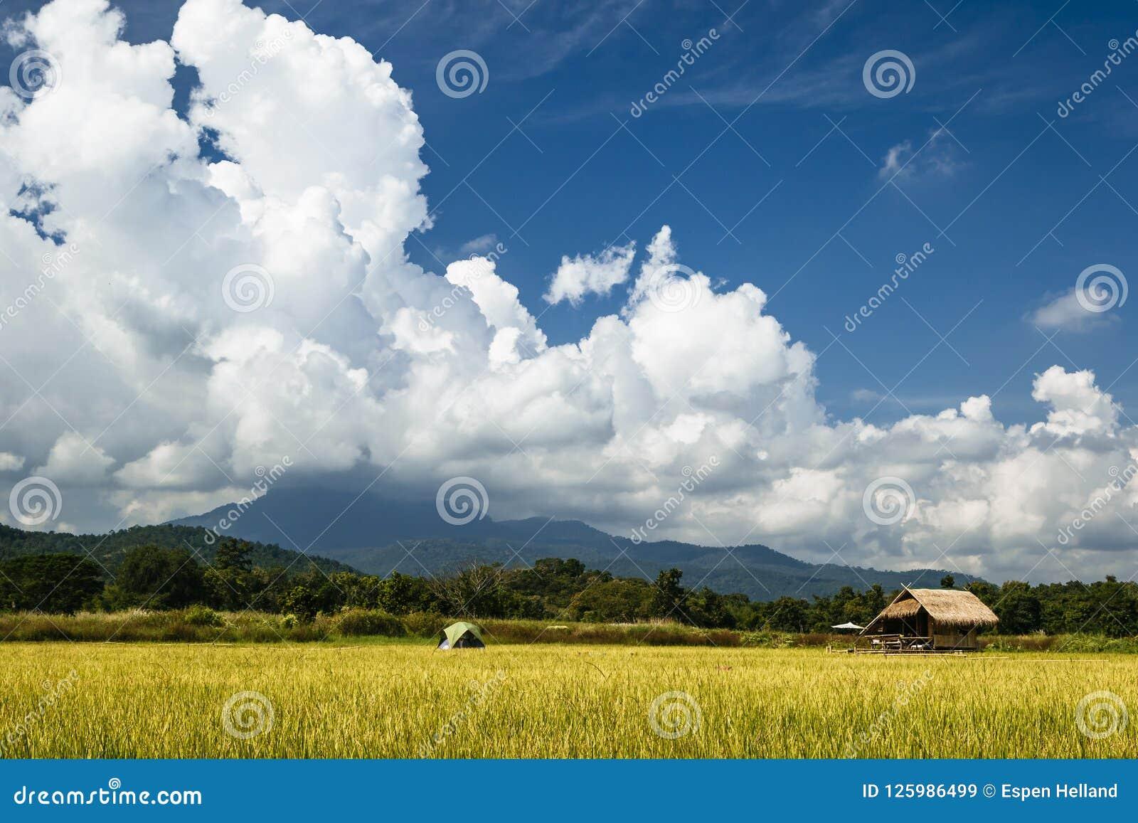 Sistemi in Tailandia con costruzione di bambù ed il grande cielo in Chiang Mai