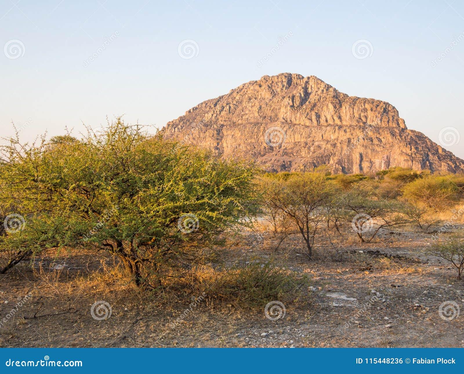 Site d héritage de collines de Tsodilo dans le kalahari du Botswana pendant l heure d or