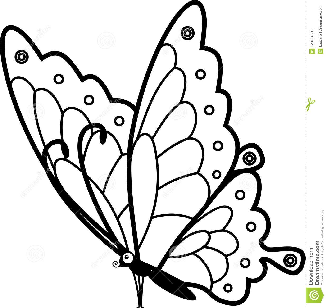 Sitting Butterfly Coloring Page Stock Vector ...