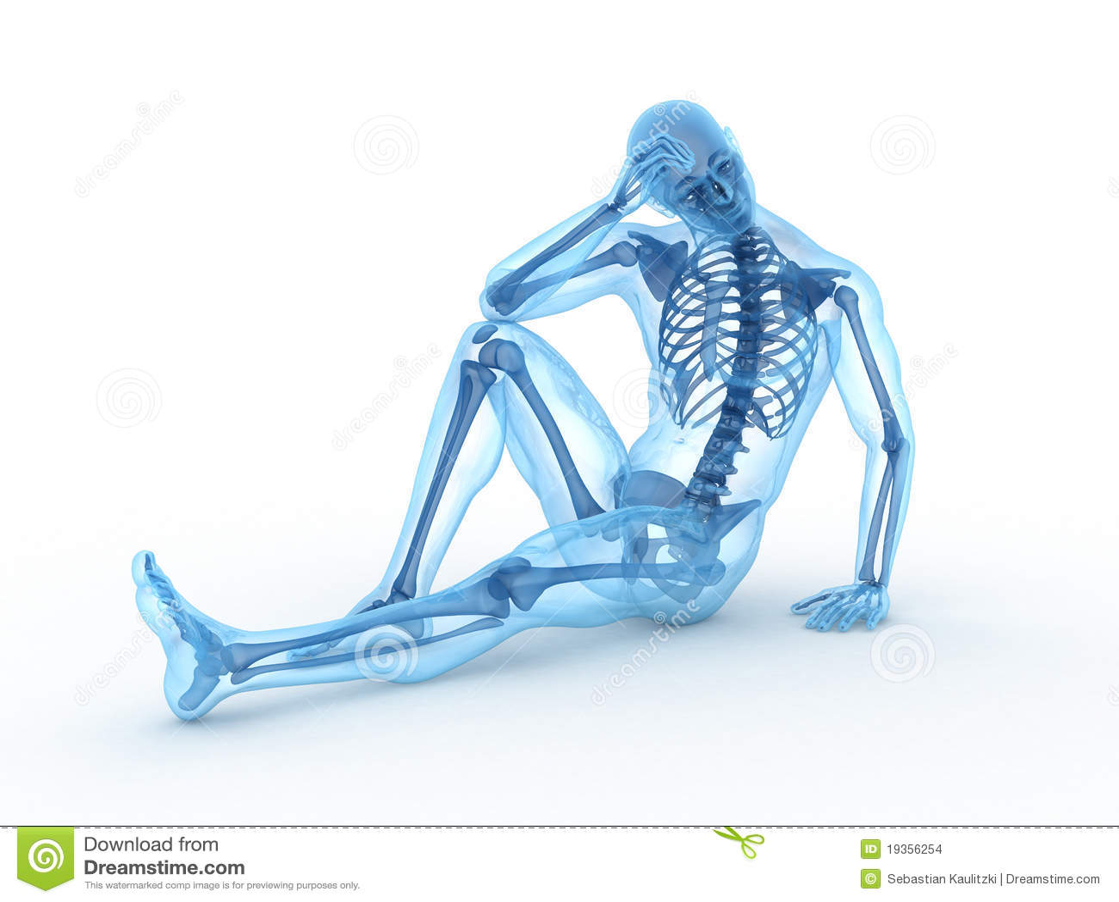 Orthopedic Skeleton Sitting male skeleton