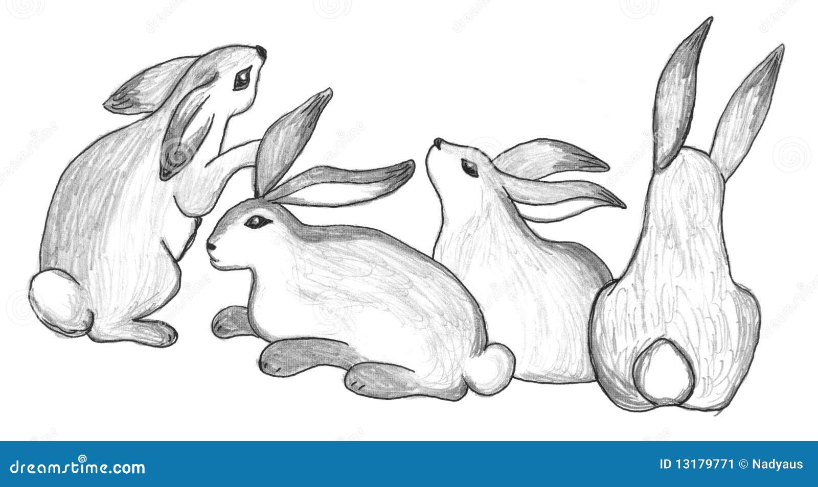 Sitting Rabbits Group Sketch Stock Illustration Illustration Of