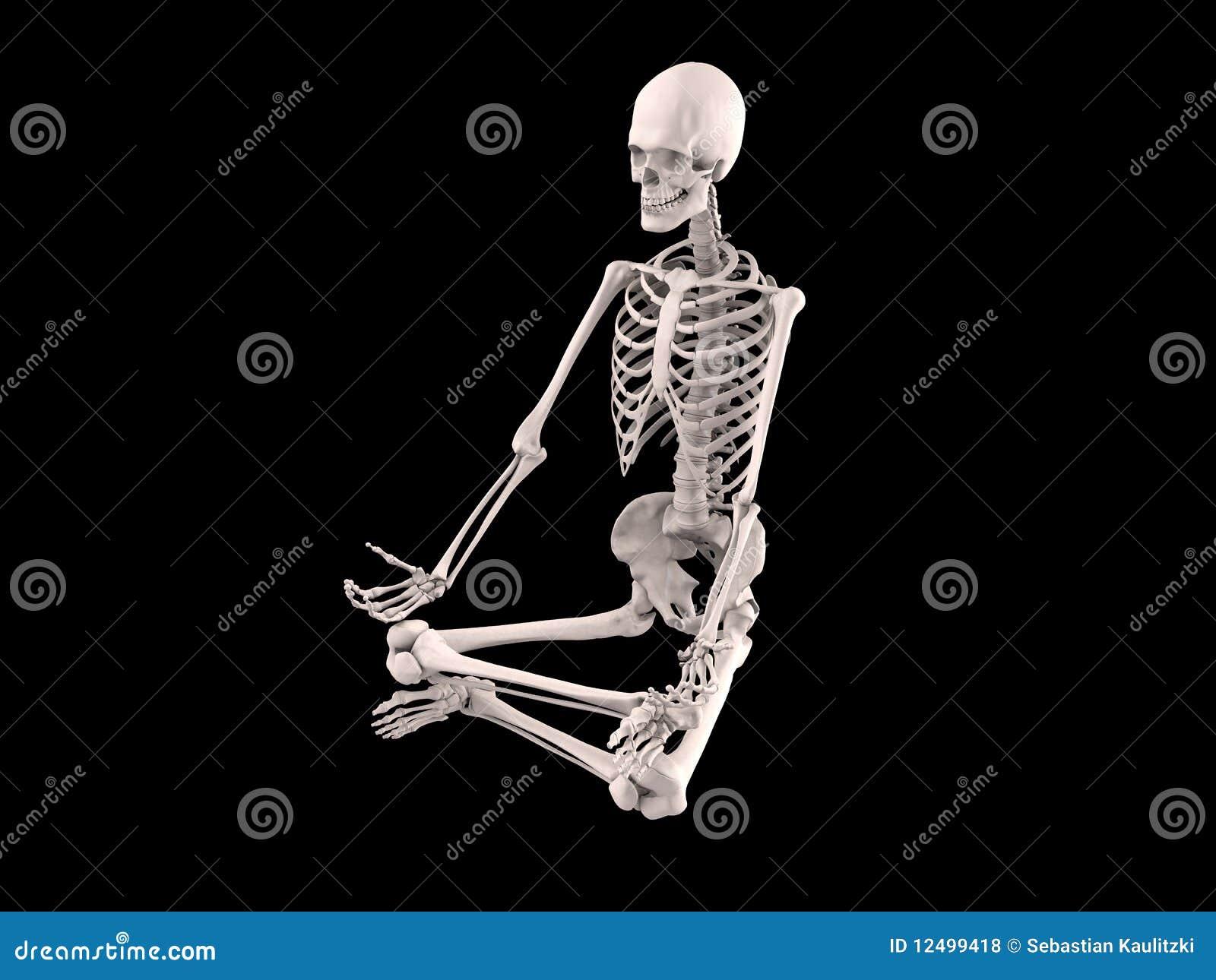 sitting skeleton royalty free stock photos