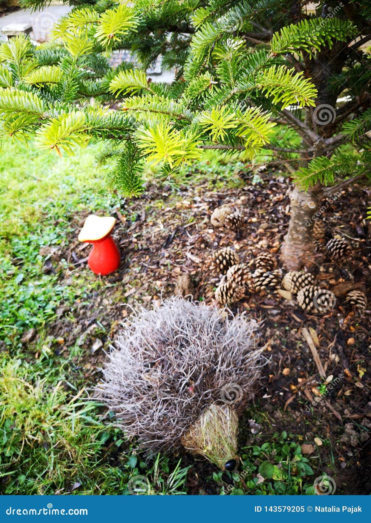 Situación del erizo debajo de la picea, de la seta roja y de conos