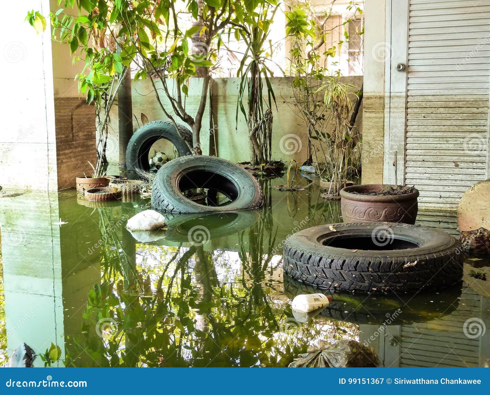 Situazione dopo l inondazione pesante per un mese
