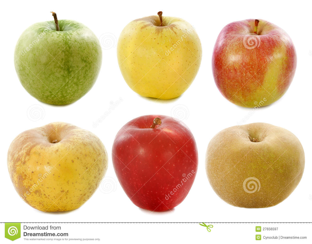 Six Apples Set Vector In Different Colors stock vector art ...