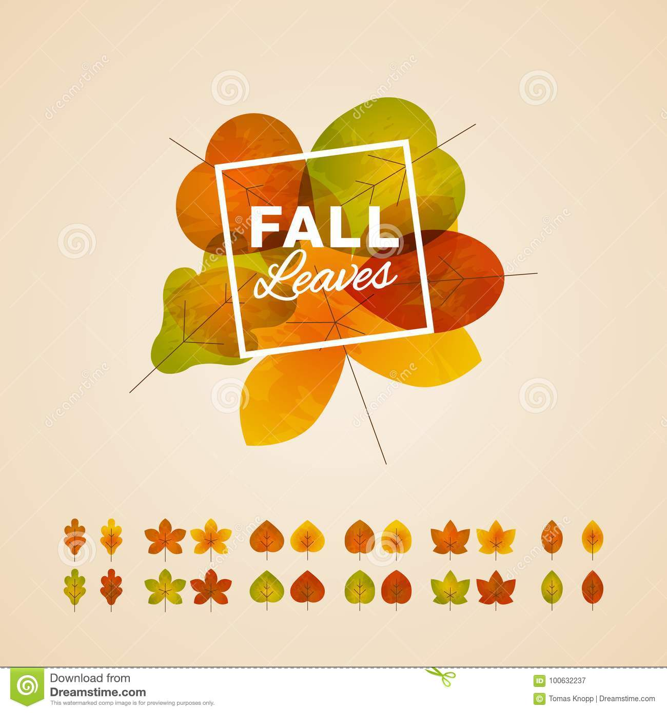 Kitchen Layout Templates 6 Different Designs: Six Different Types Of Fall Leaves Template Stock Vector
