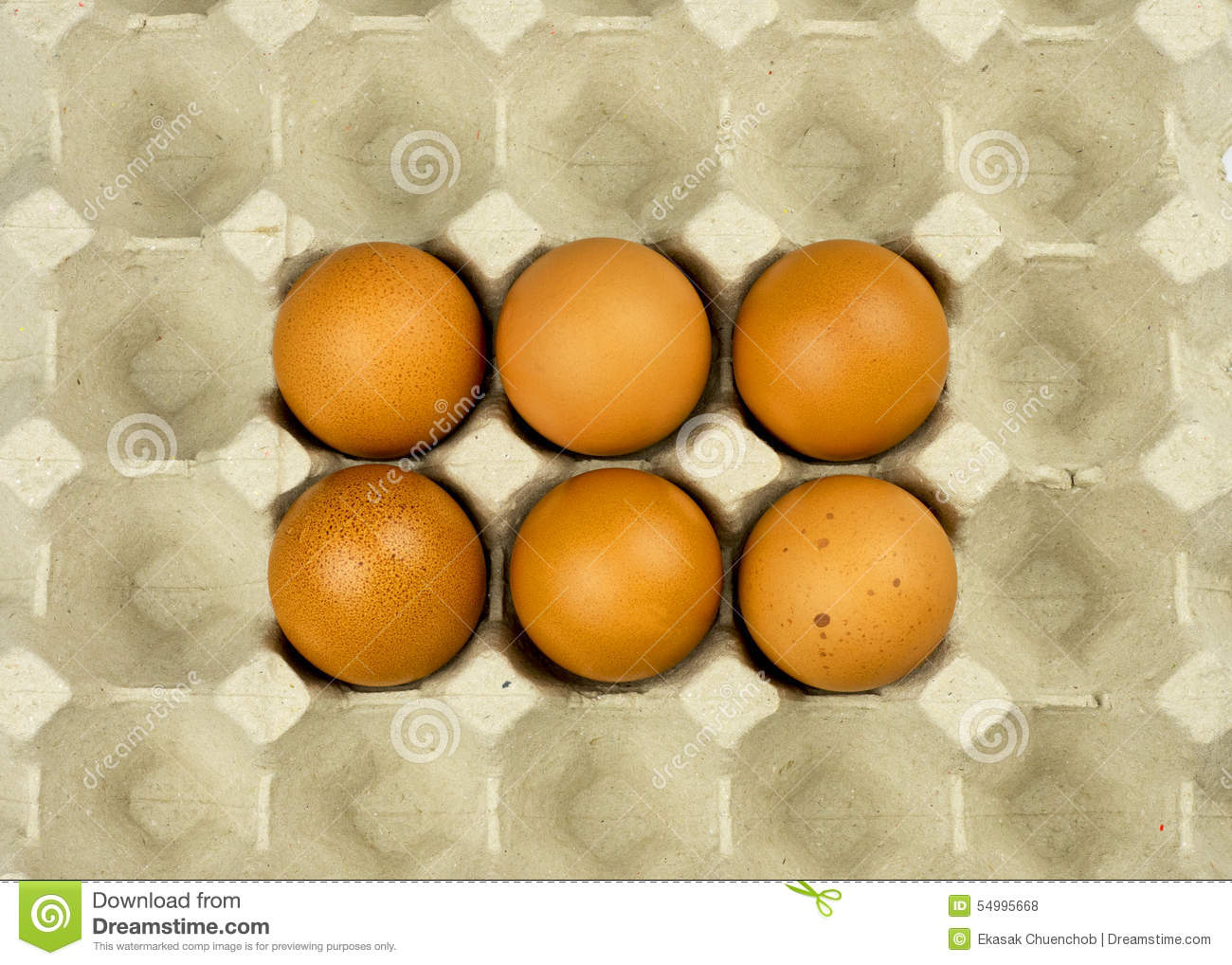 Six eggs in paper tray