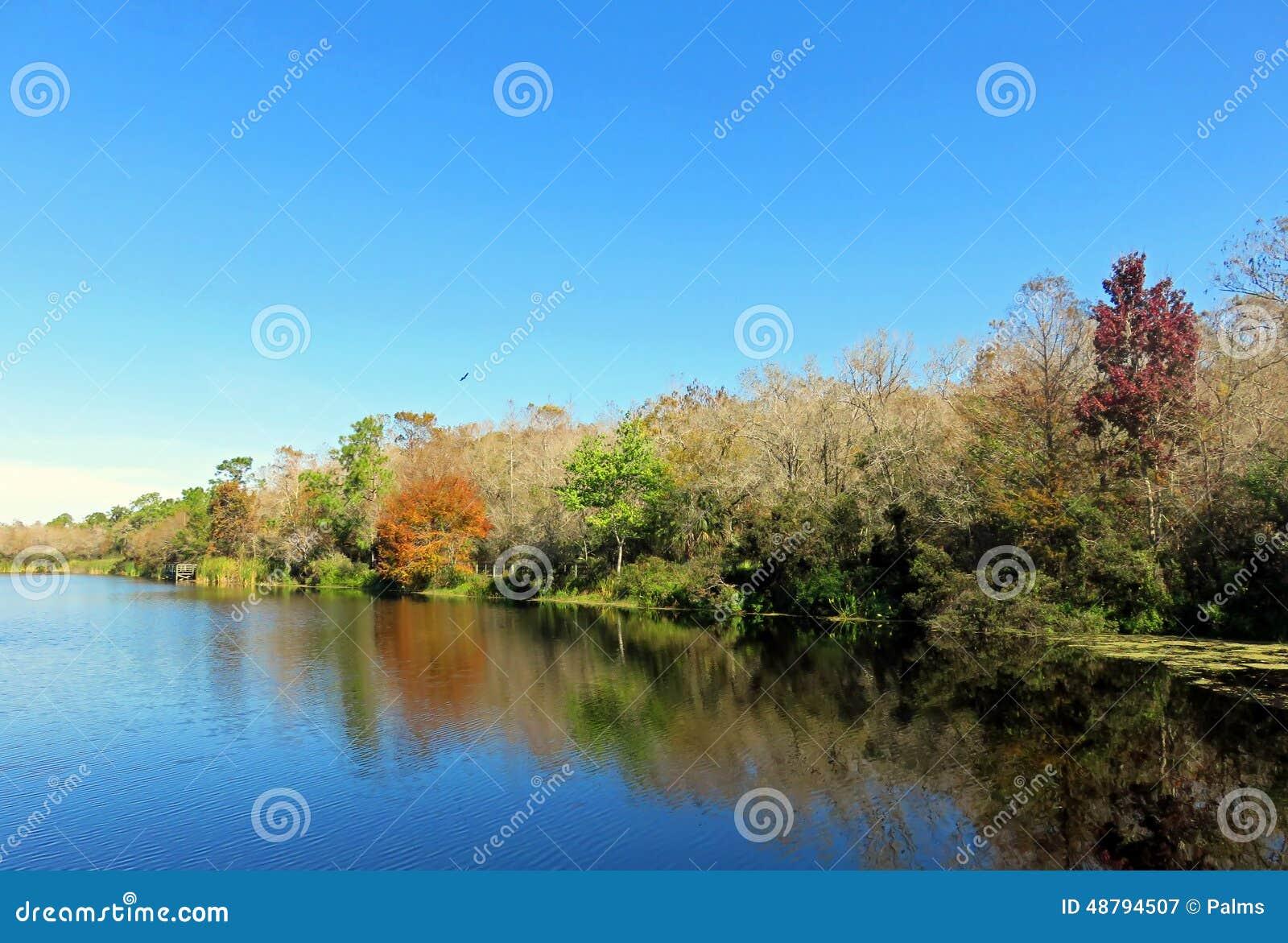 Six Mile Cypress Slough, Florida