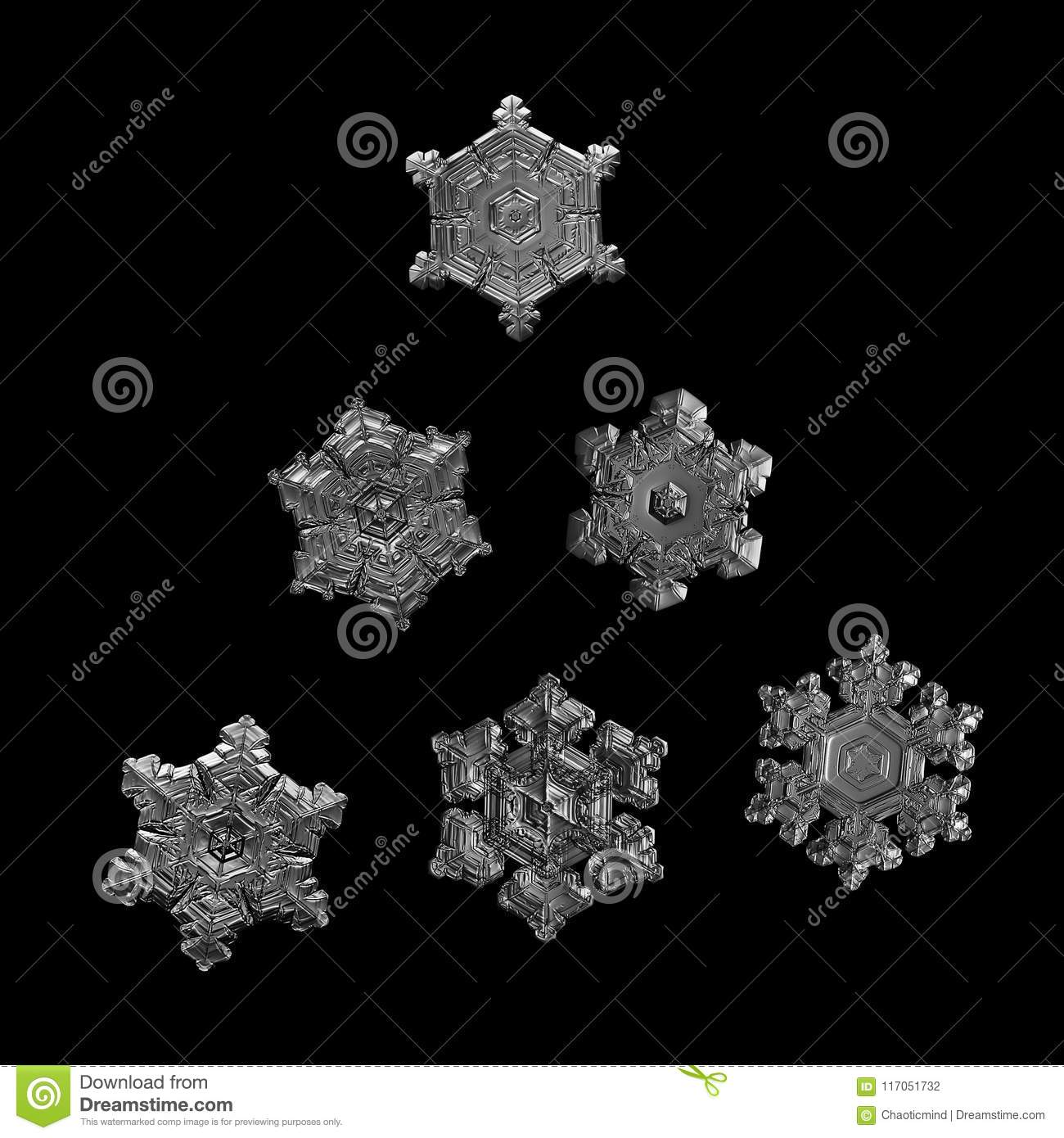 Six snowflakes isolated on black background