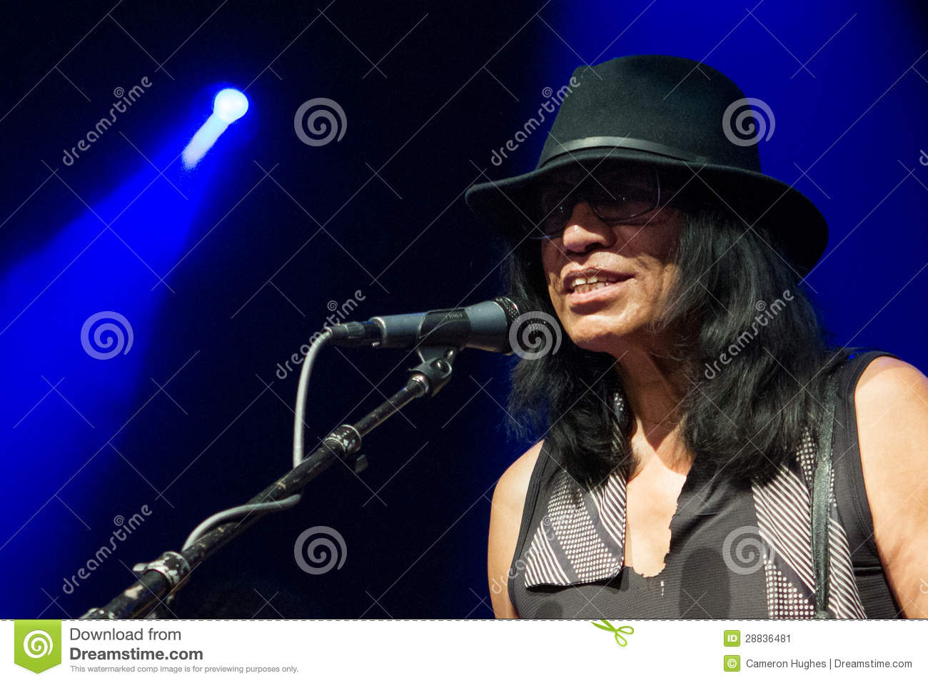 searching for sugar man music download