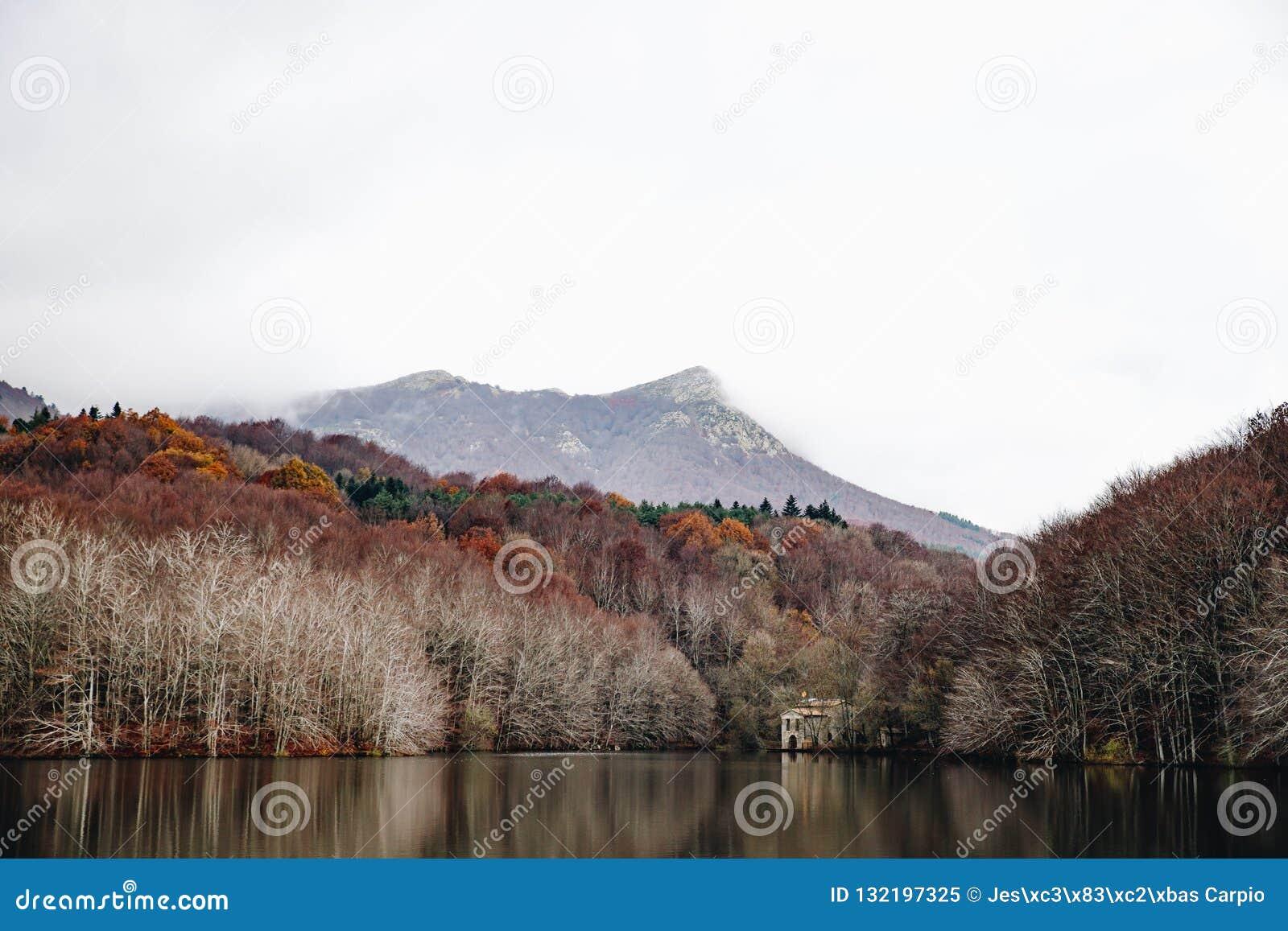 Sjö i Autumn Forest Landscape
