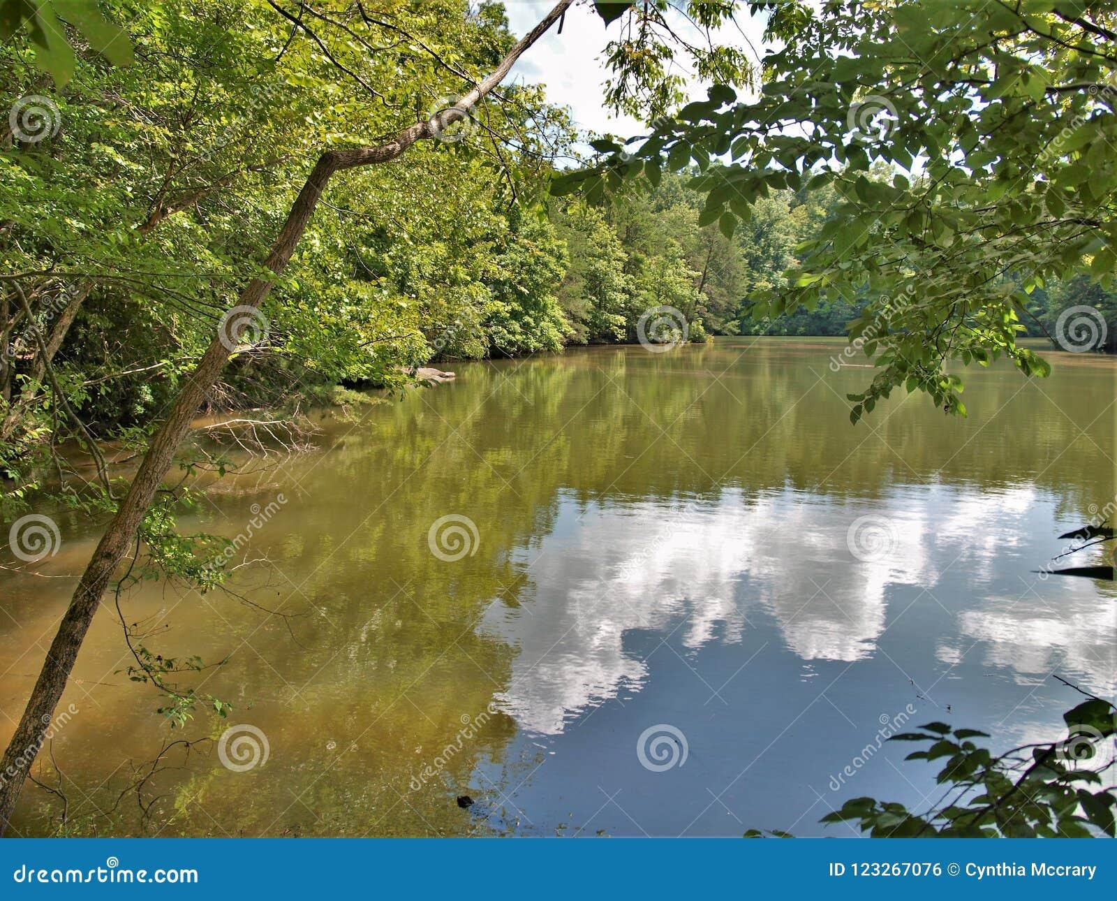 Sjö Norman State Park i North Carolina