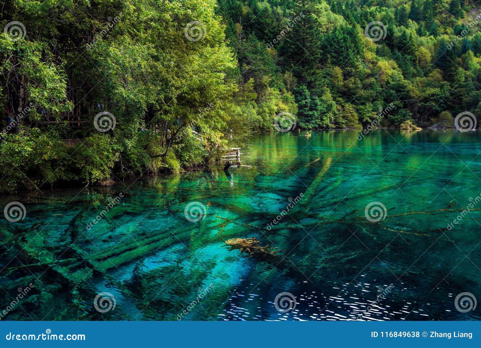 Sjö och träd i Jiuzhaigou Valley, Sichuan, Kina