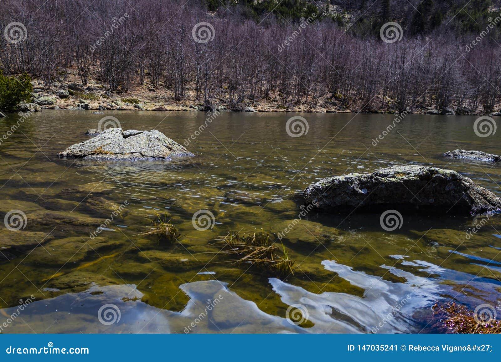 Sjön, vaggar och en vårdag