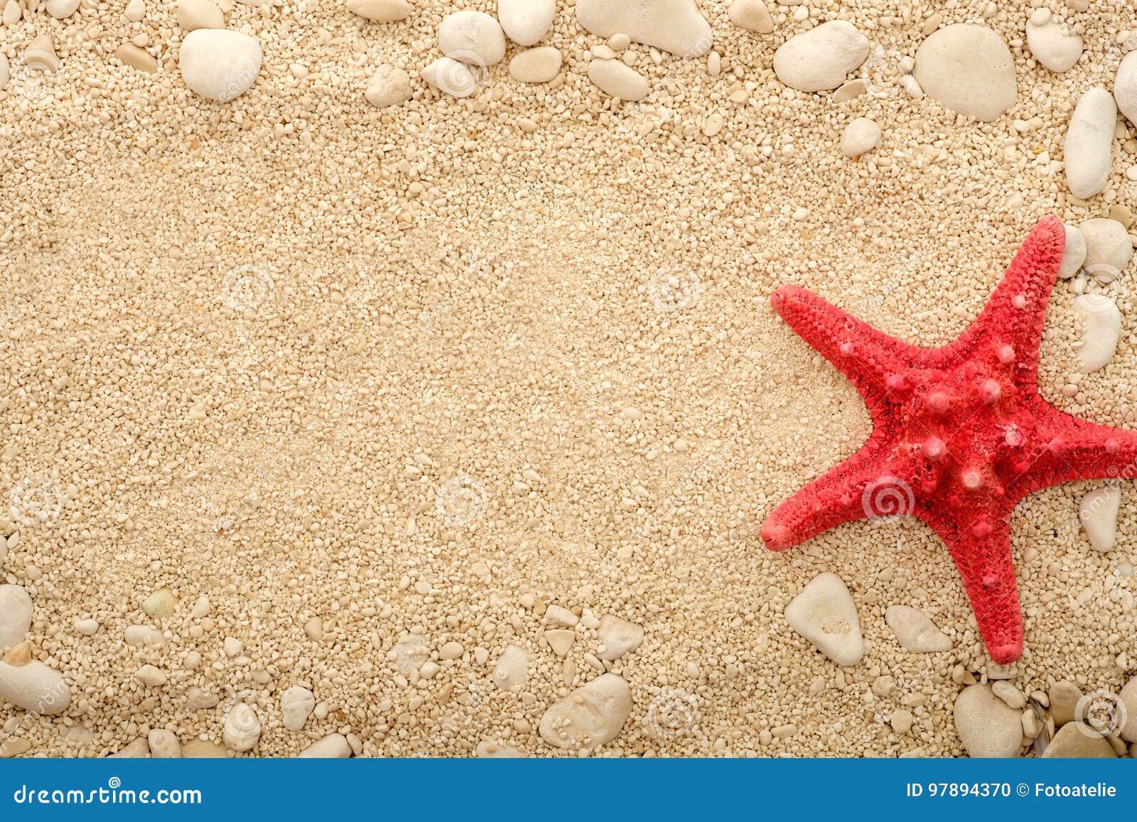Sjöstjärna på den kust- sanden