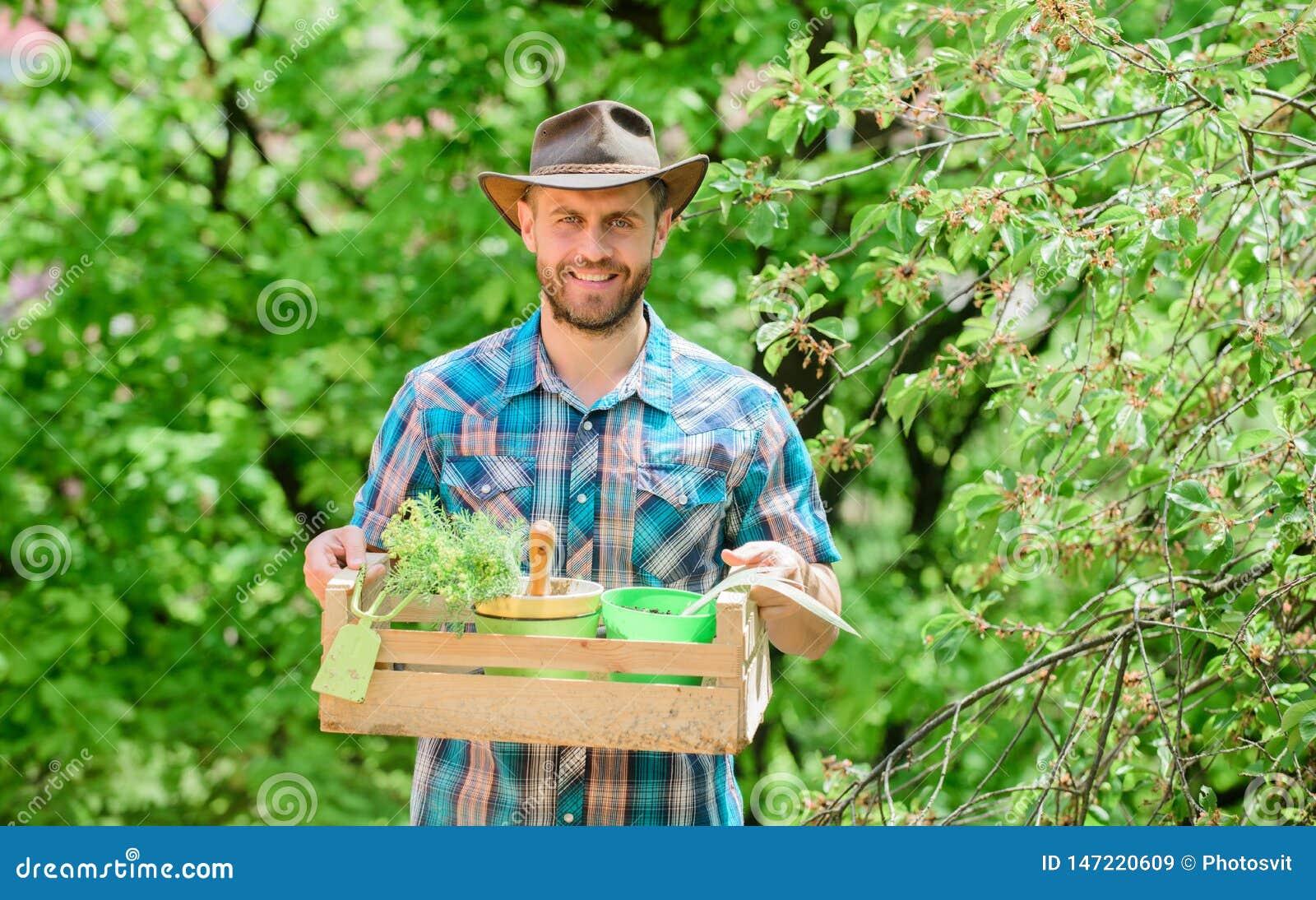 Skäggig ask för trädgårdsmästaregrabbhåll med blomkrukan och hackan som arbeta i trädgården hjälpmedlet Arbeta i trädgården rådgi