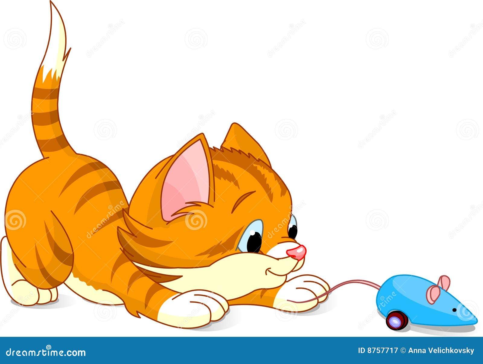 Skämtsam kattunge