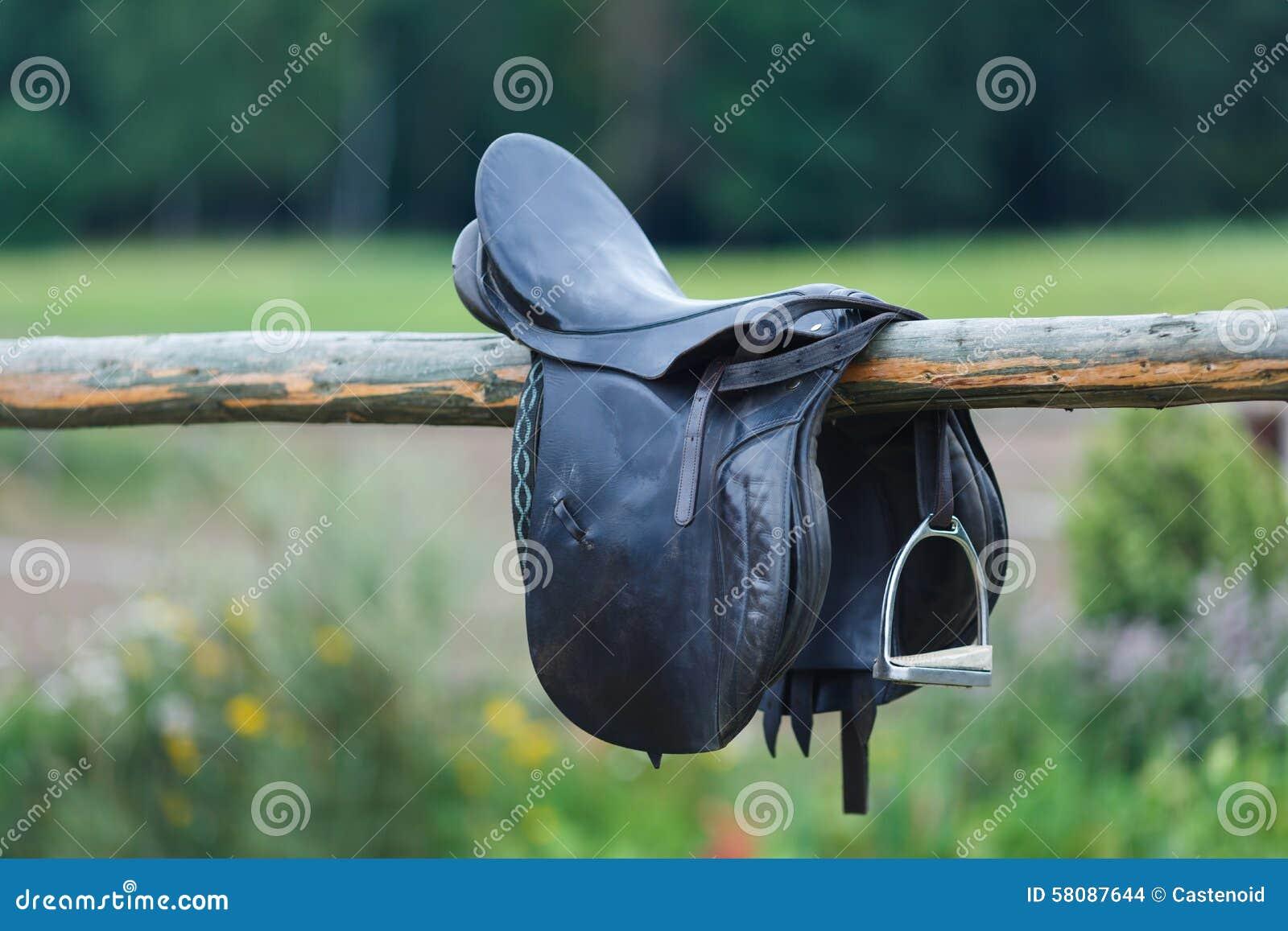 Skóra comberów koń w stajence